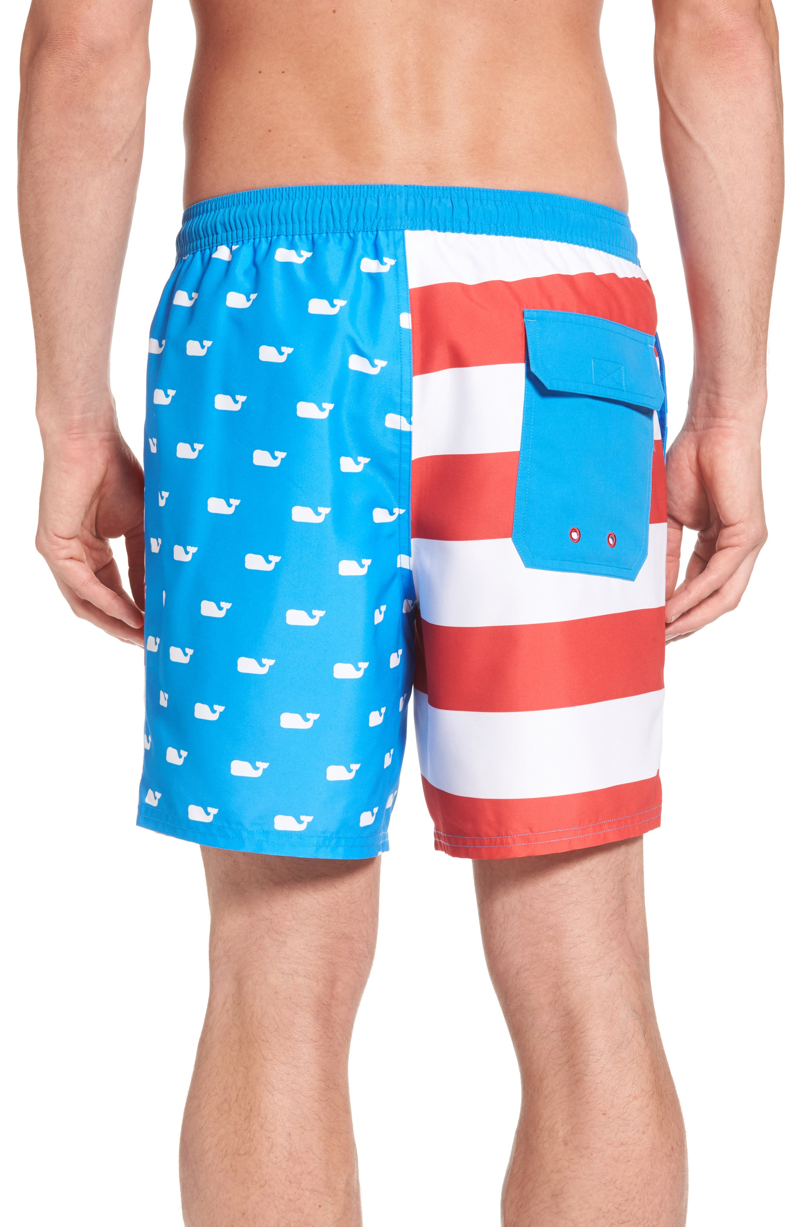 Whale Flag Chappy Swim Trunks,                             Alternate thumbnail 2, color,                             494