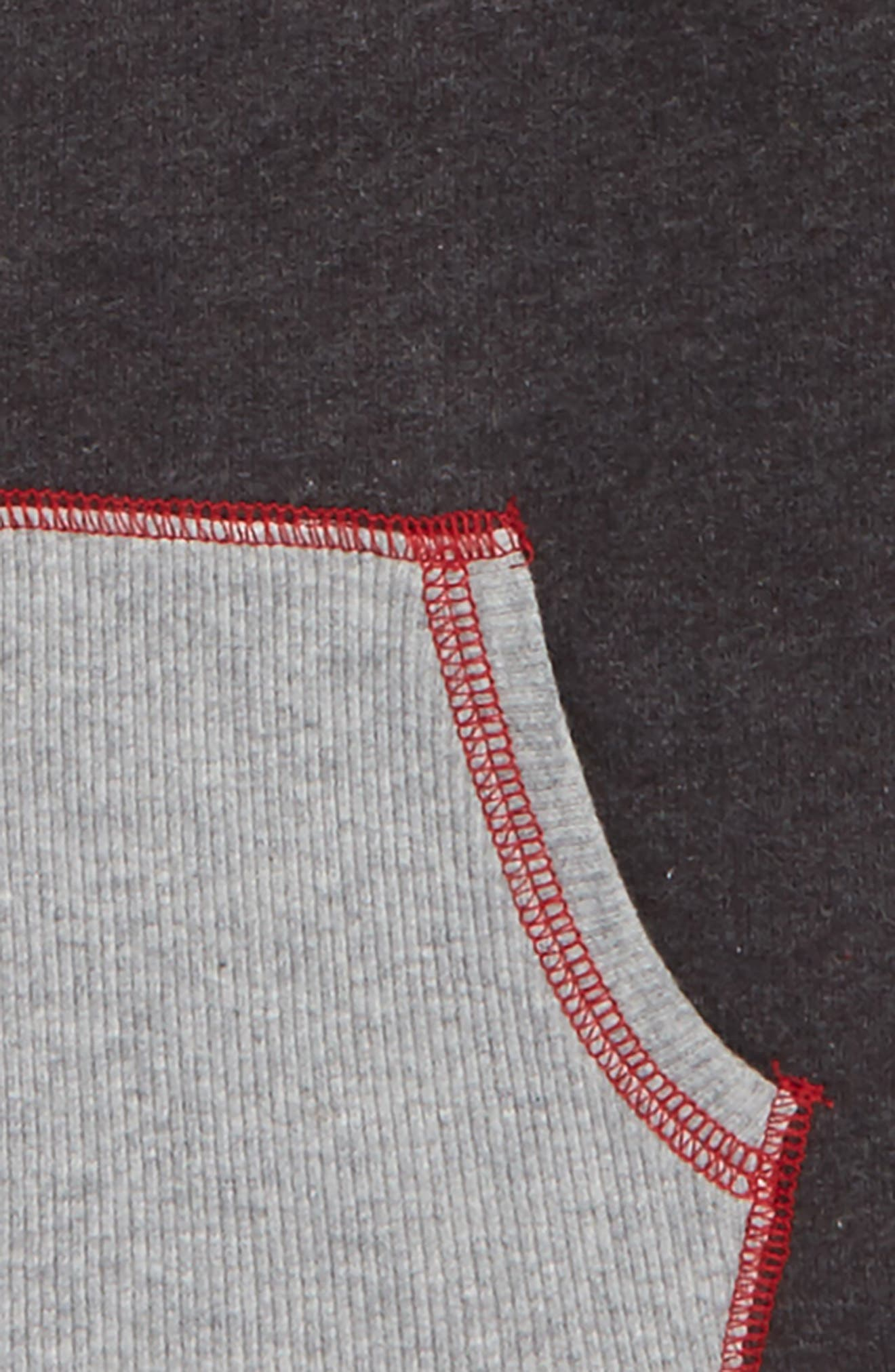 French Terry Organic Cotton Hoodie,                             Alternate thumbnail 2, color,                             024