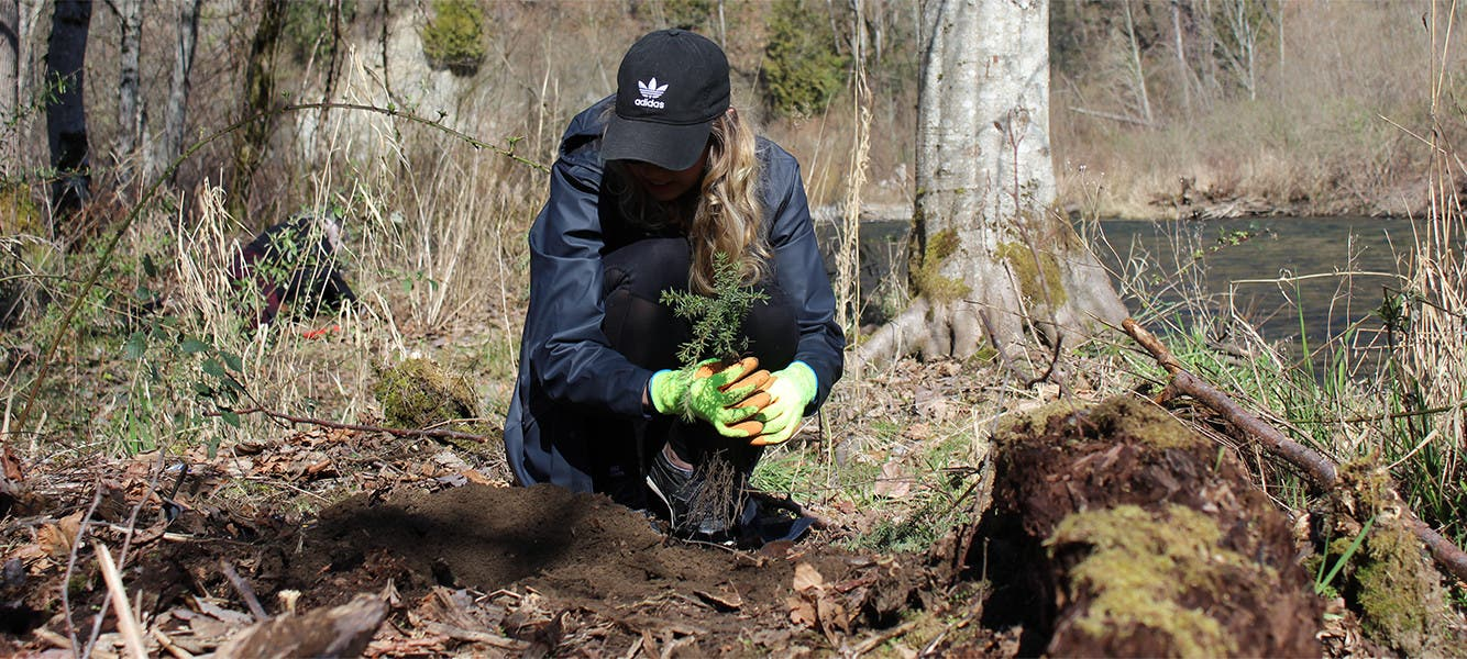 Forterra Tree Planting Event