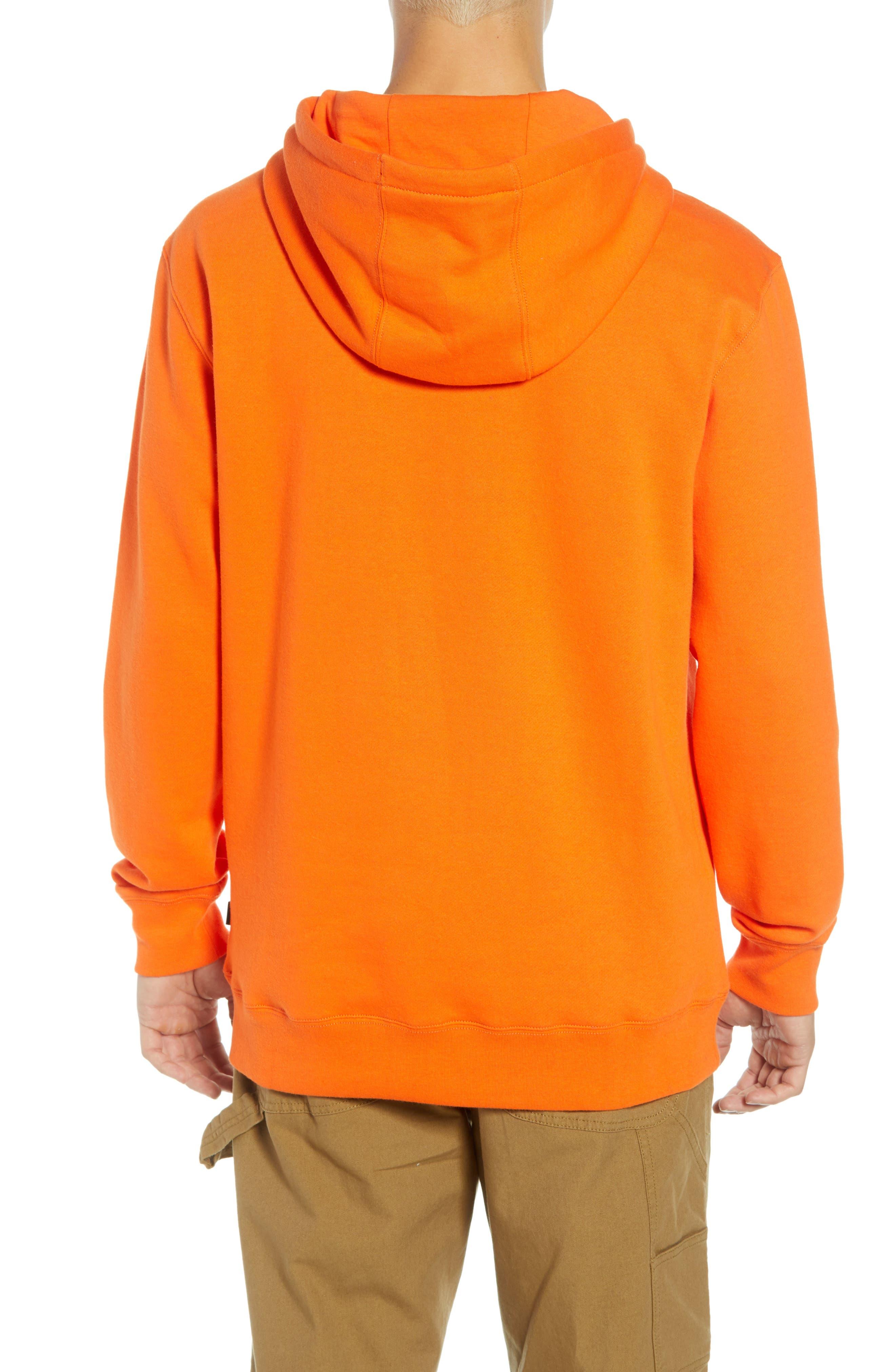 Classic Hoodie Sweatshirt,                             Alternate thumbnail 2, color,                             800