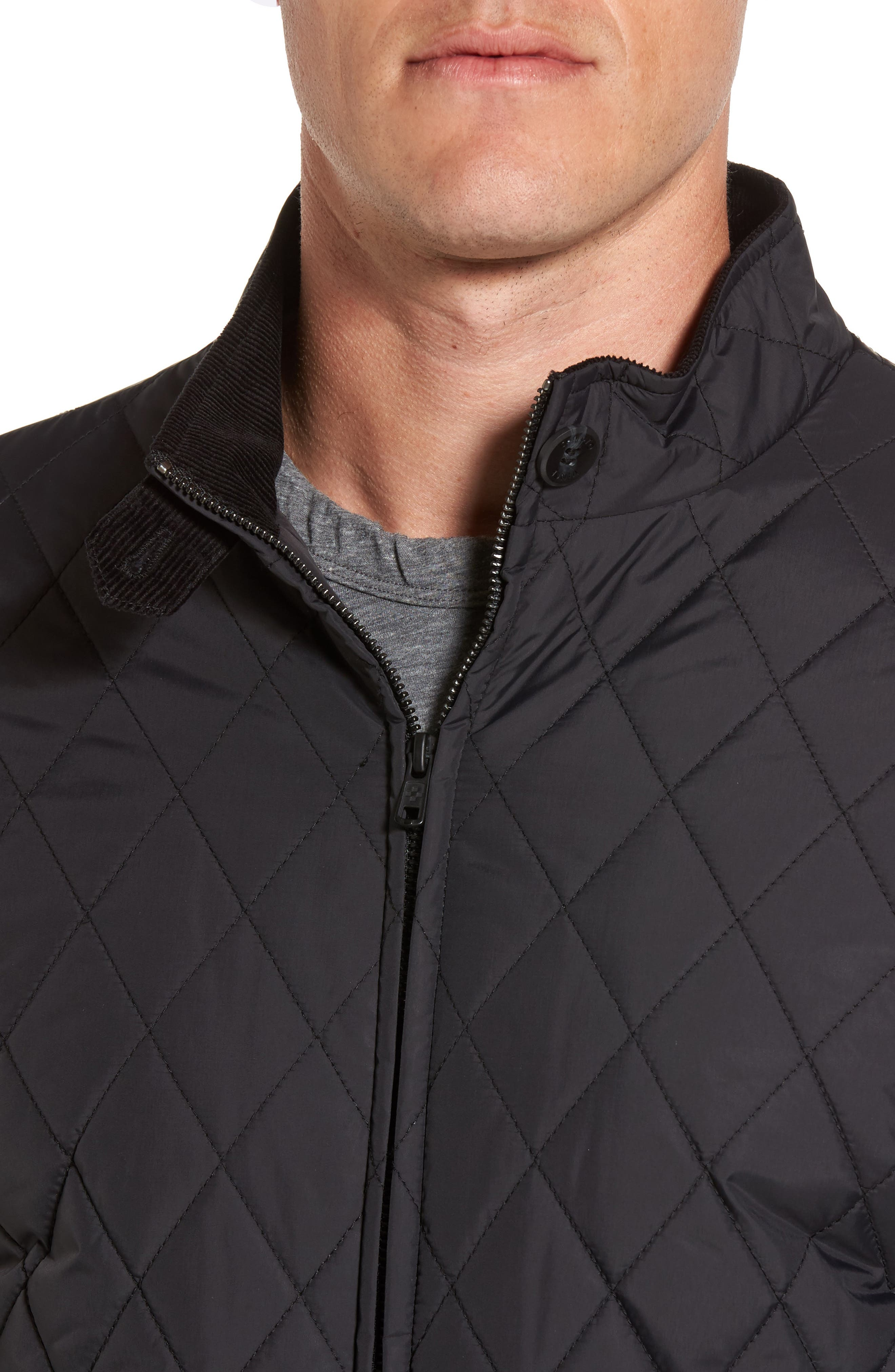 Quilted Moto Jacket,                             Alternate thumbnail 6, color,