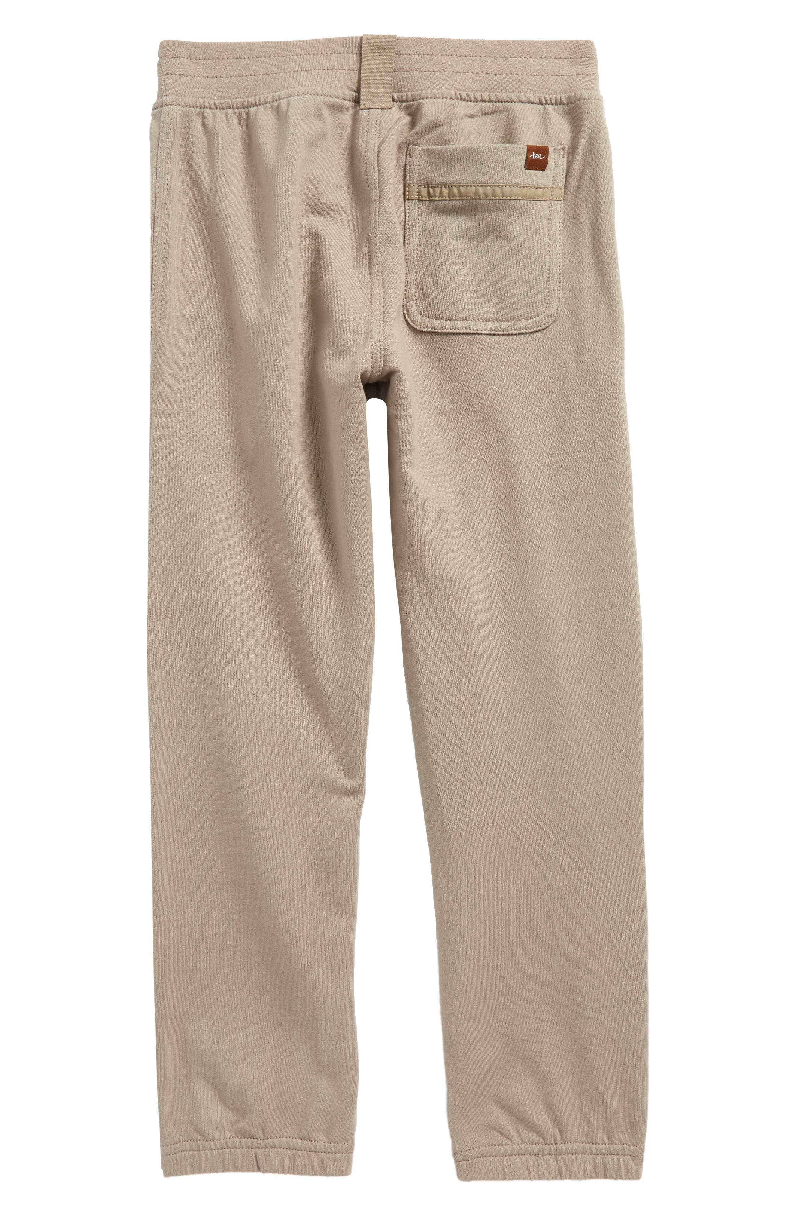 French Terry Moto Pants,                             Alternate thumbnail 2, color,                             268