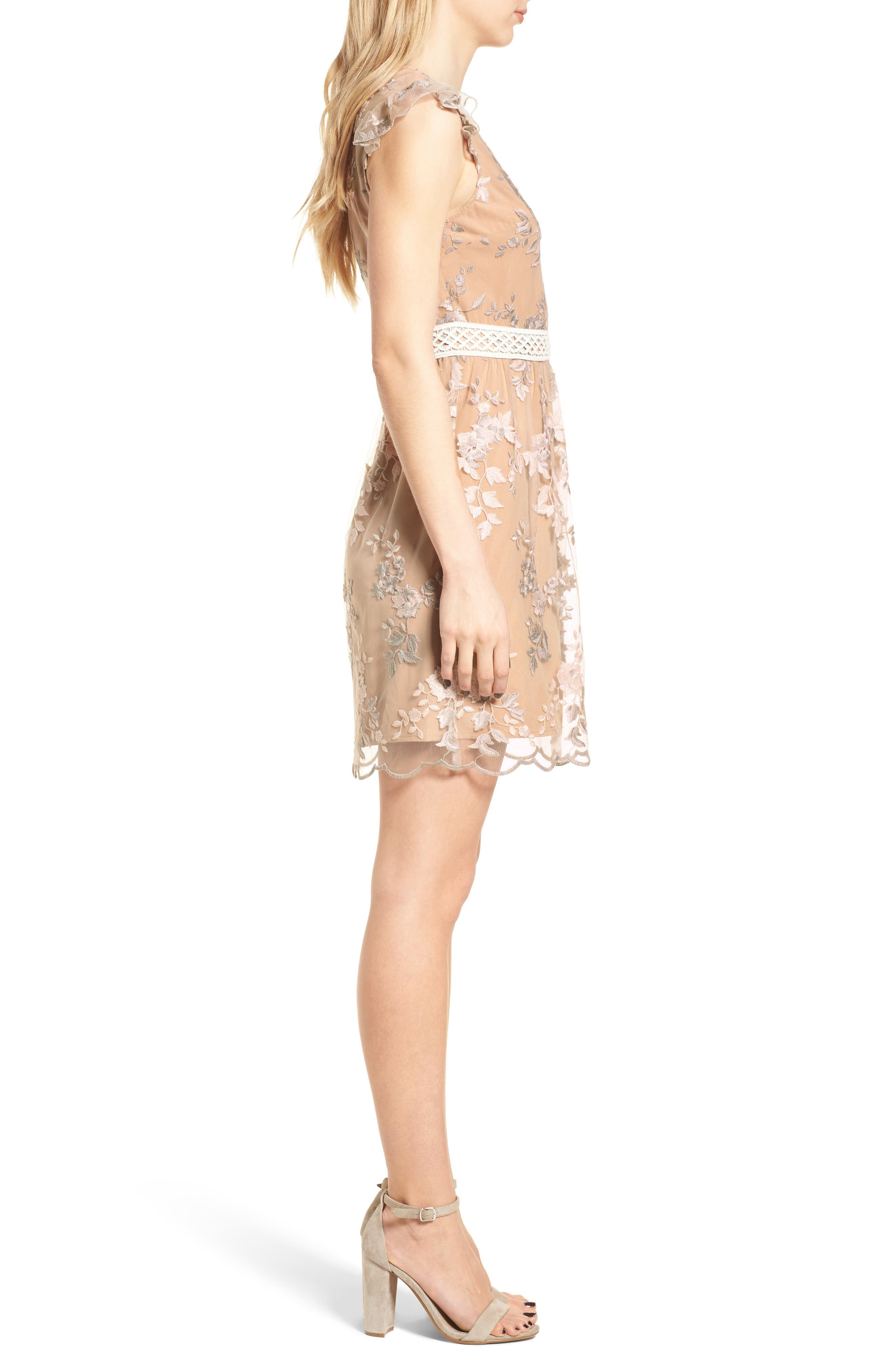 Oakfield Embroidered Minidress,                             Alternate thumbnail 3, color,
