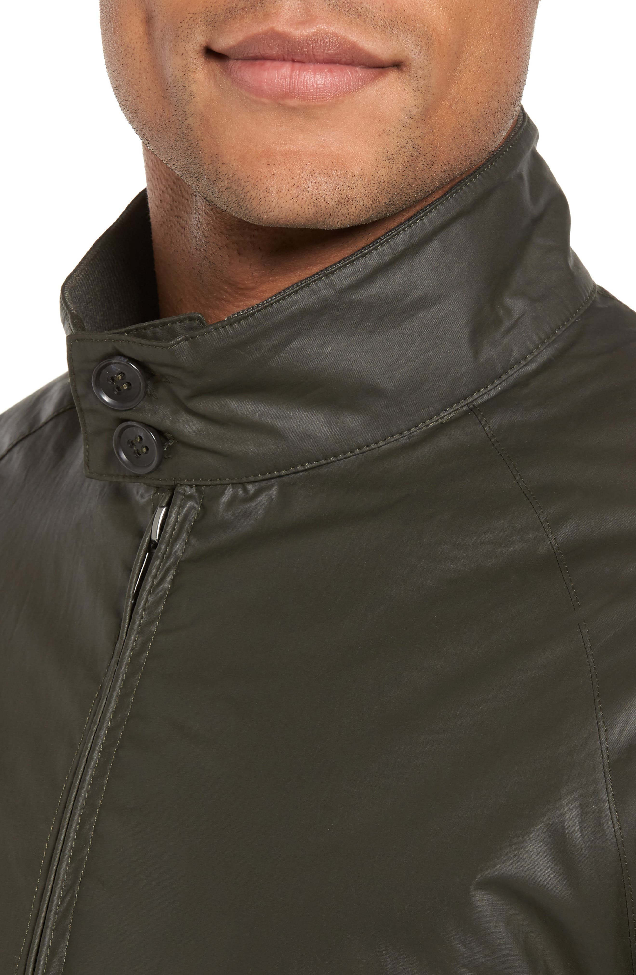 Insulated Harrington Jacket,                             Alternate thumbnail 8, color,