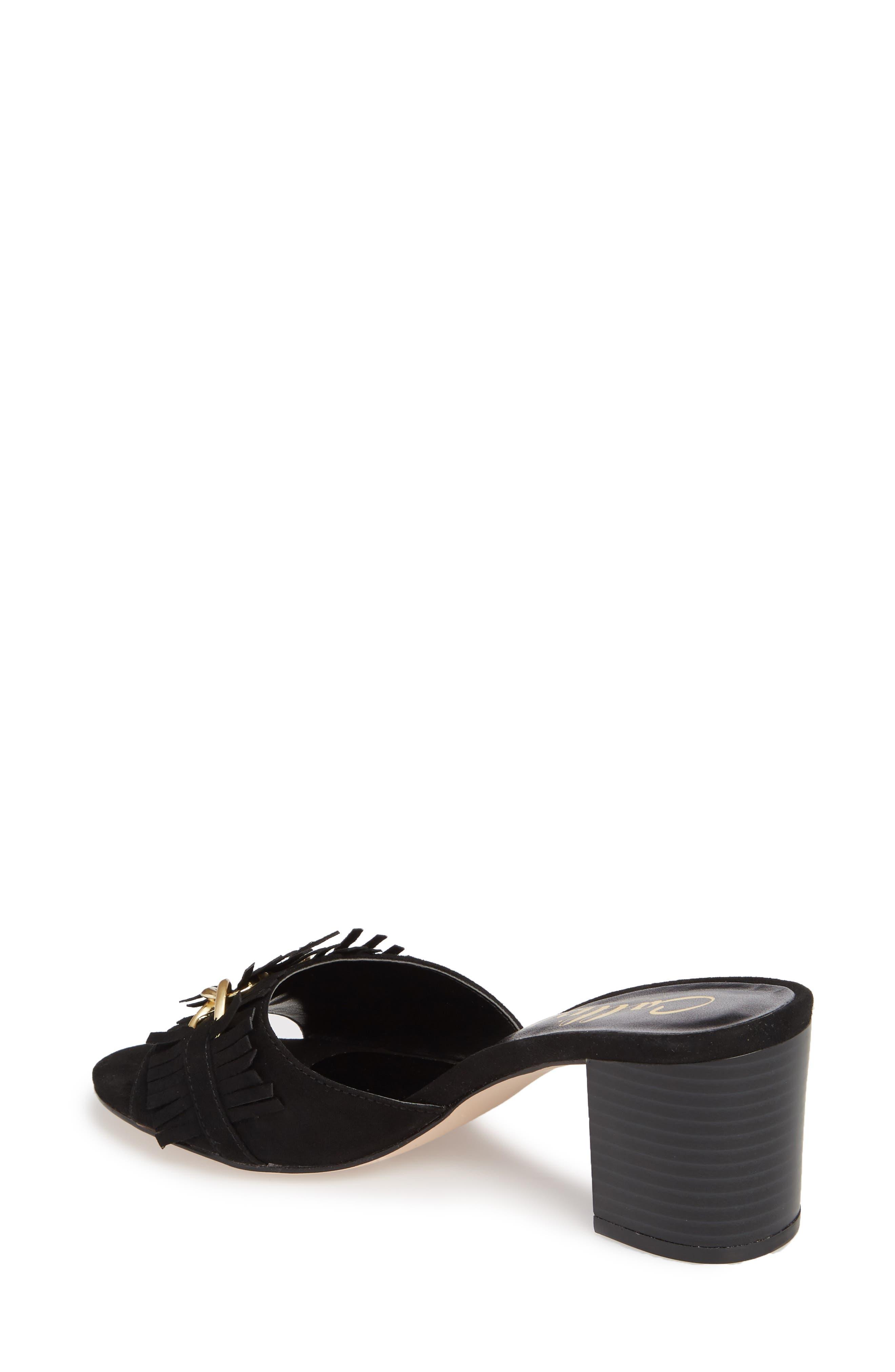 Zinnia Block Heel Slide Sandal,                             Alternate thumbnail 2, color,                             BLACK SUEDE