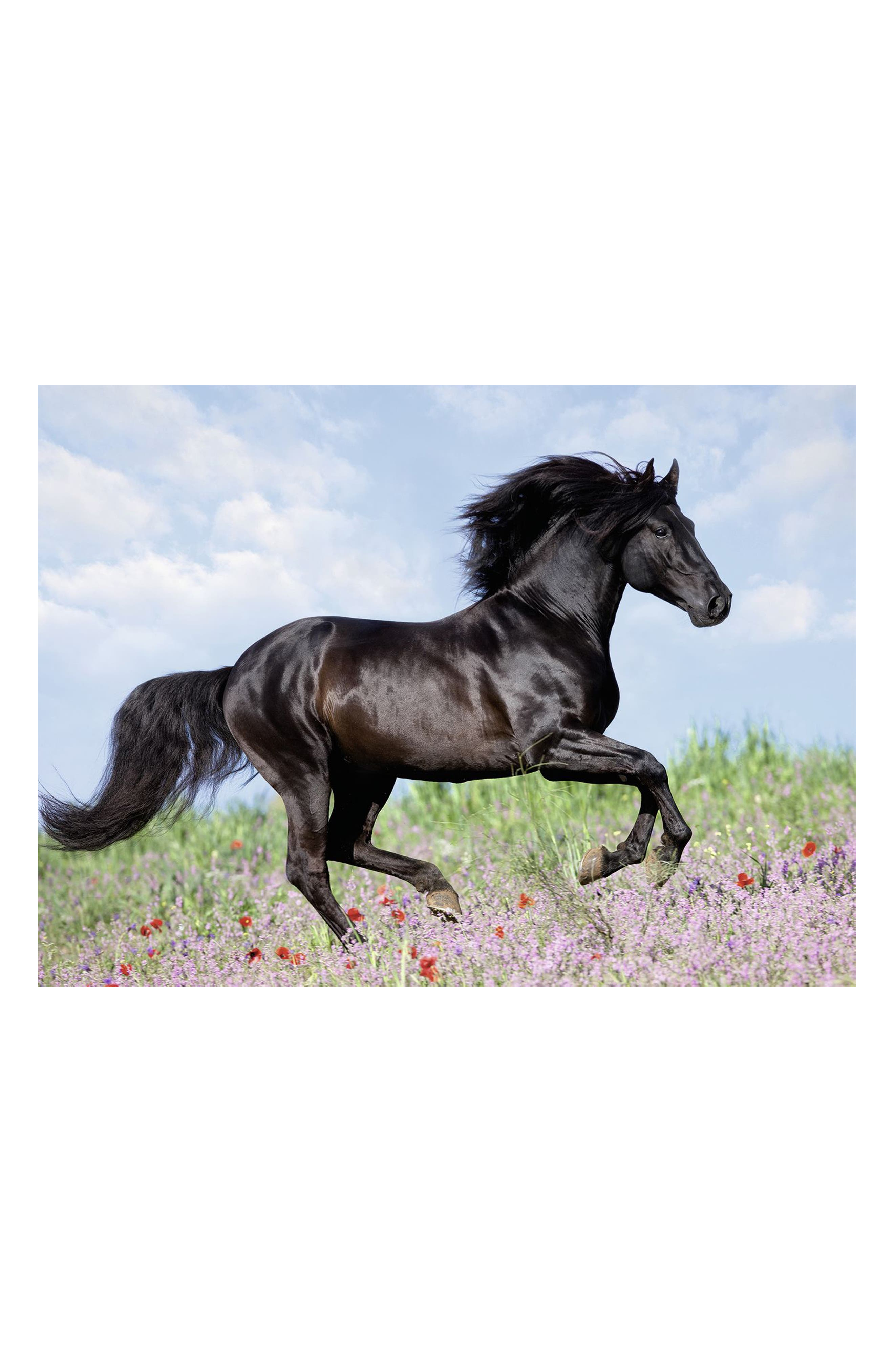 Beautiful Horse 200-Piece Puzzle,                             Alternate thumbnail 2, color,                             001