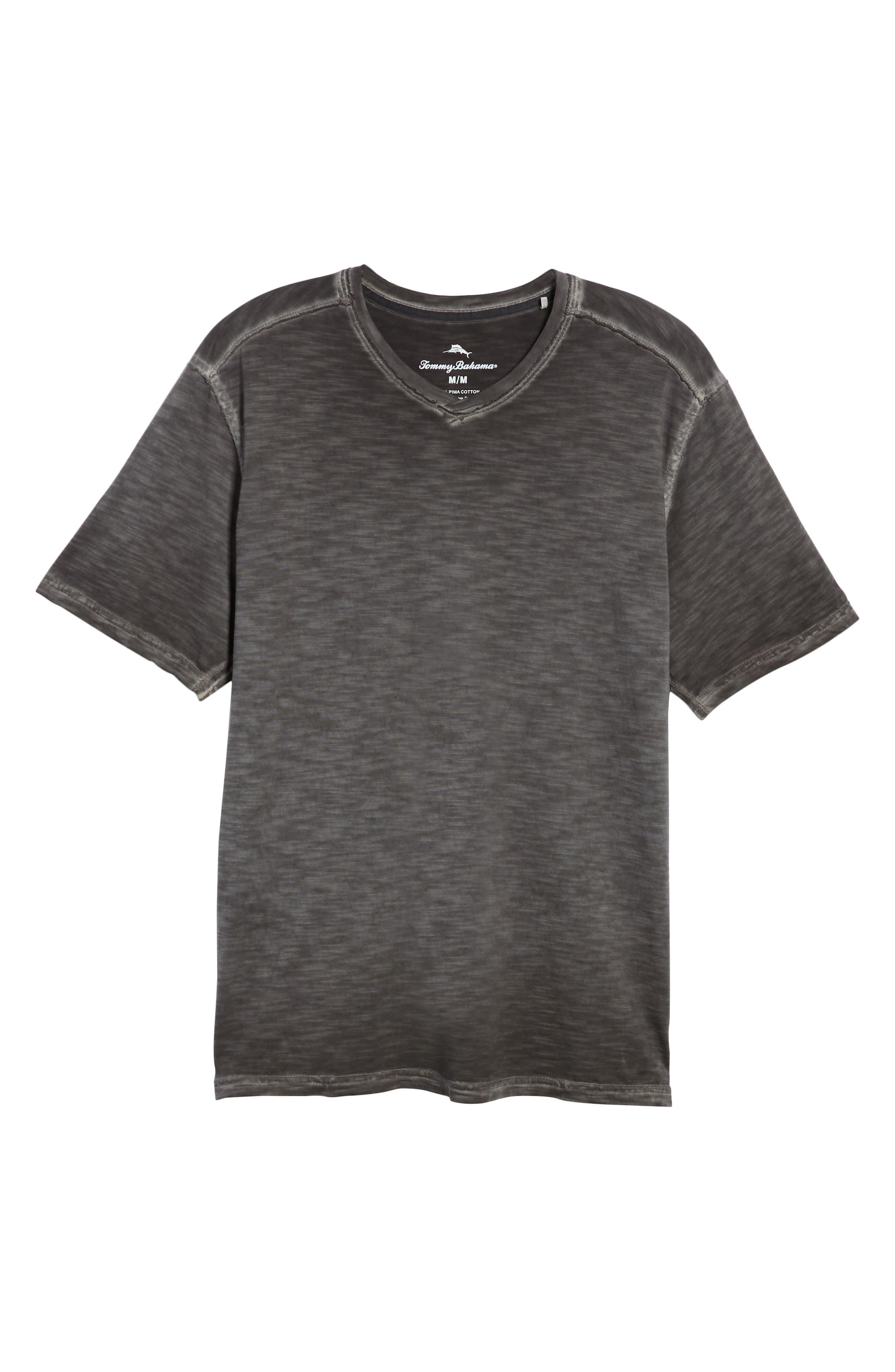 Suncoast Shores V-Neck T-Shirt,                             Alternate thumbnail 6, color,                             001