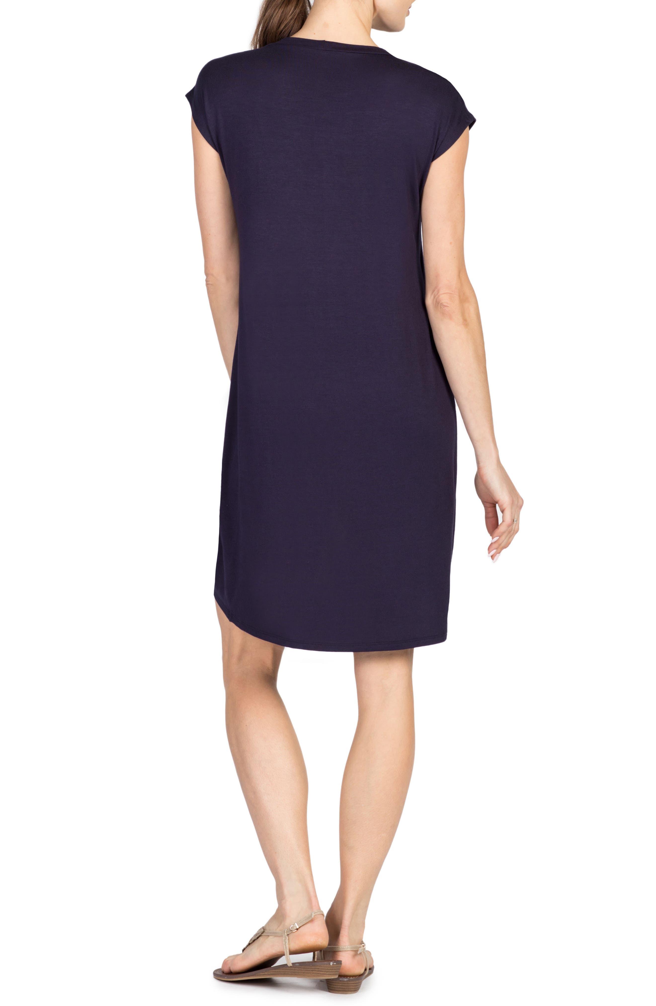 Lille Layered Maternity/Nursing Sheath Dress,                             Alternate thumbnail 2, color,                             NAVY/ WHITE STRIPE