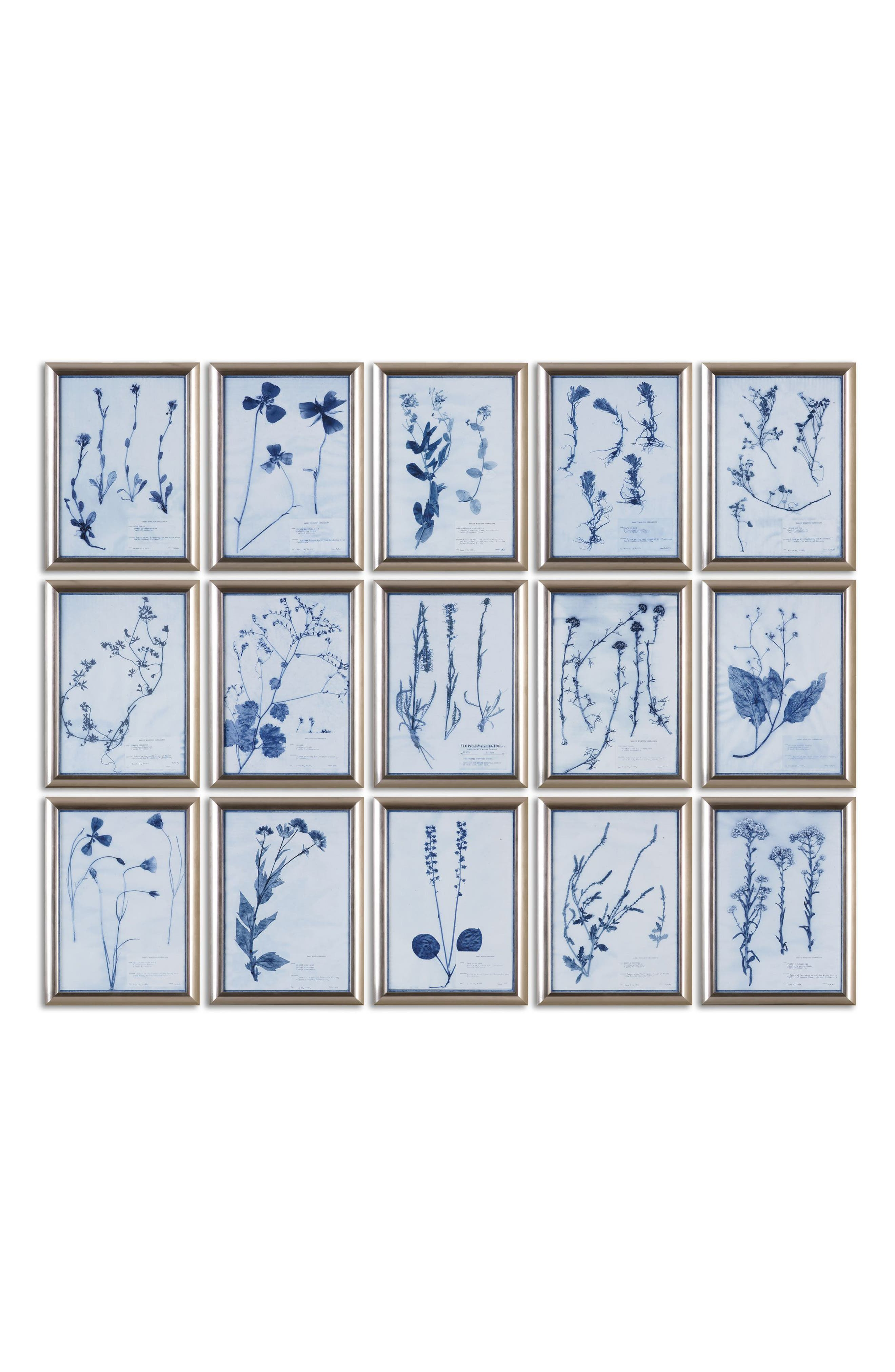 Pressed Flower 15-Piece Wall Art Set,                             Main thumbnail 1, color,                             020
