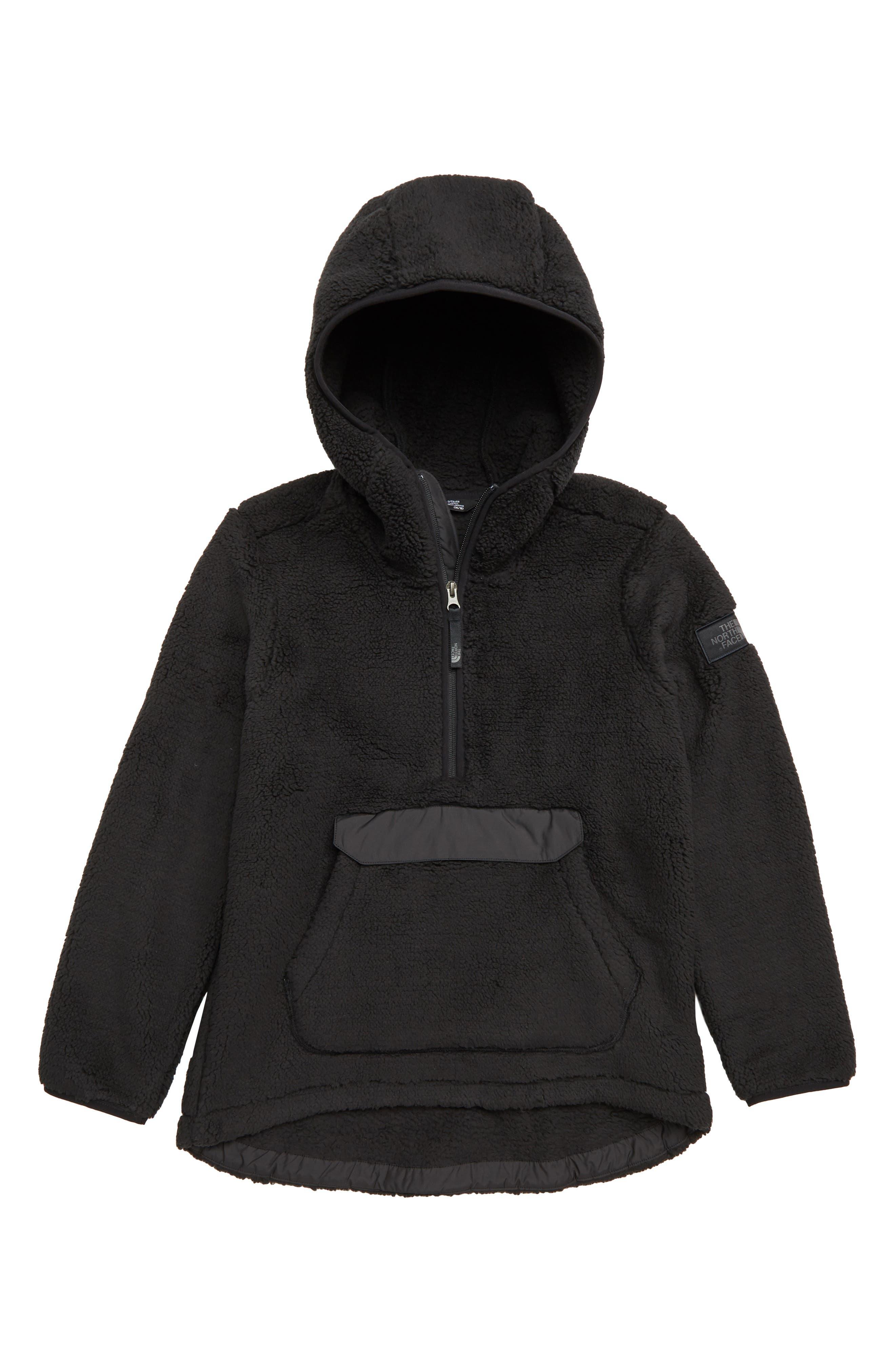 Campshire High Pile Fleece Quarter Zip Hoodie,                         Main,                         color, TNF BLACK