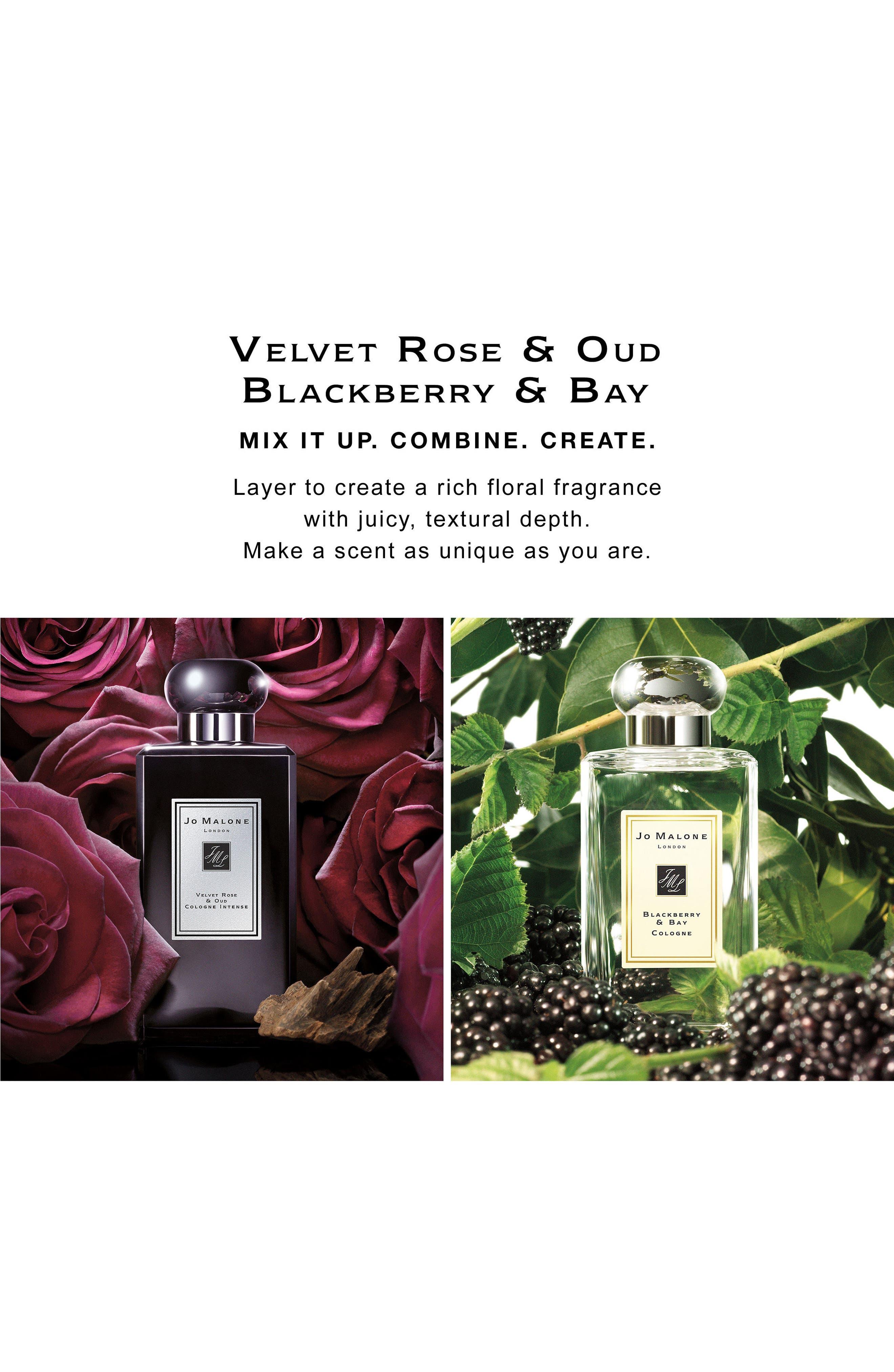 Blackberry & Bay Cologne,                             Alternate thumbnail 2, color,                             NO COLOR