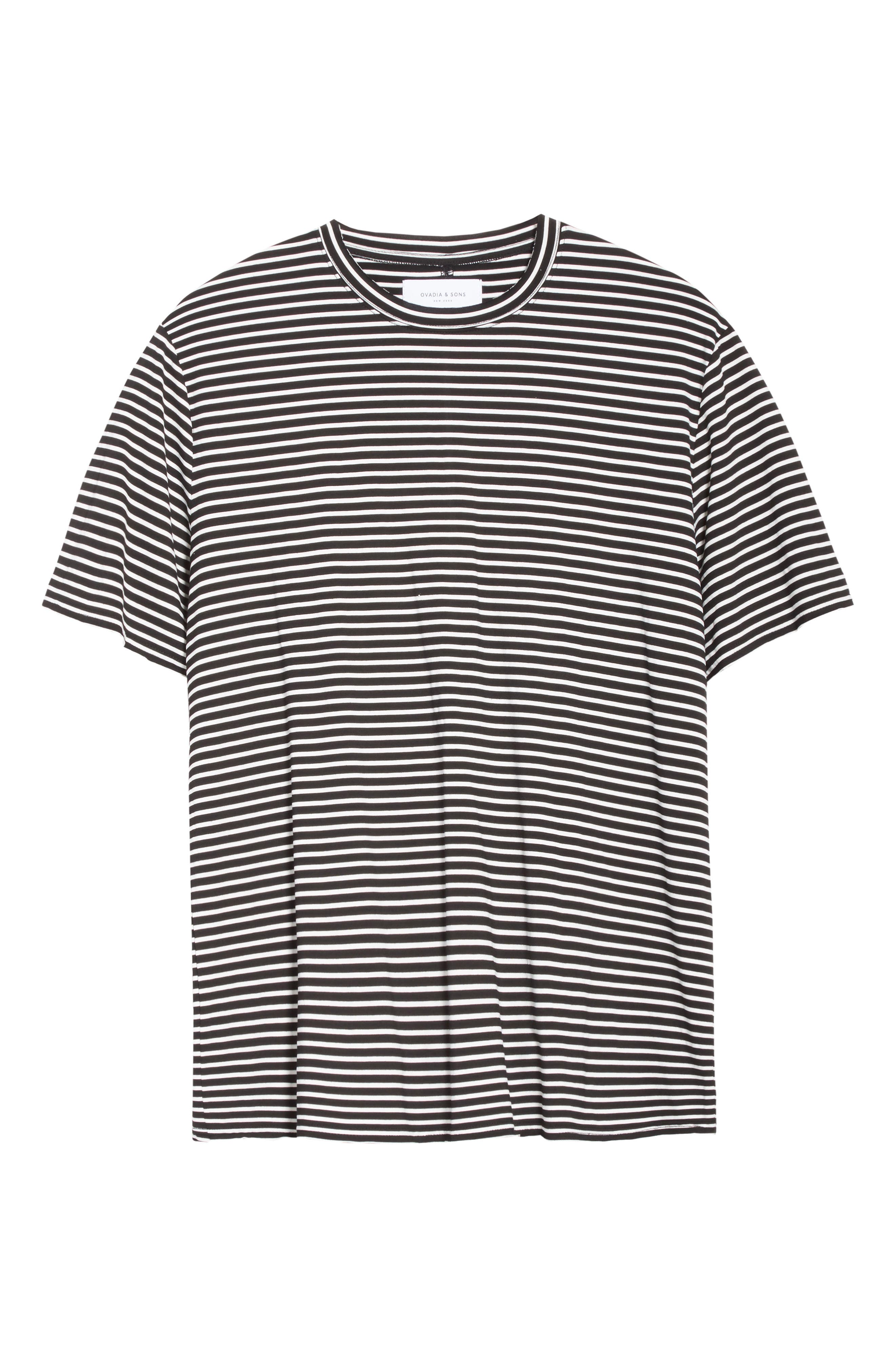 Raw Edge Stripe T-Shirt,                             Alternate thumbnail 6, color,                             008