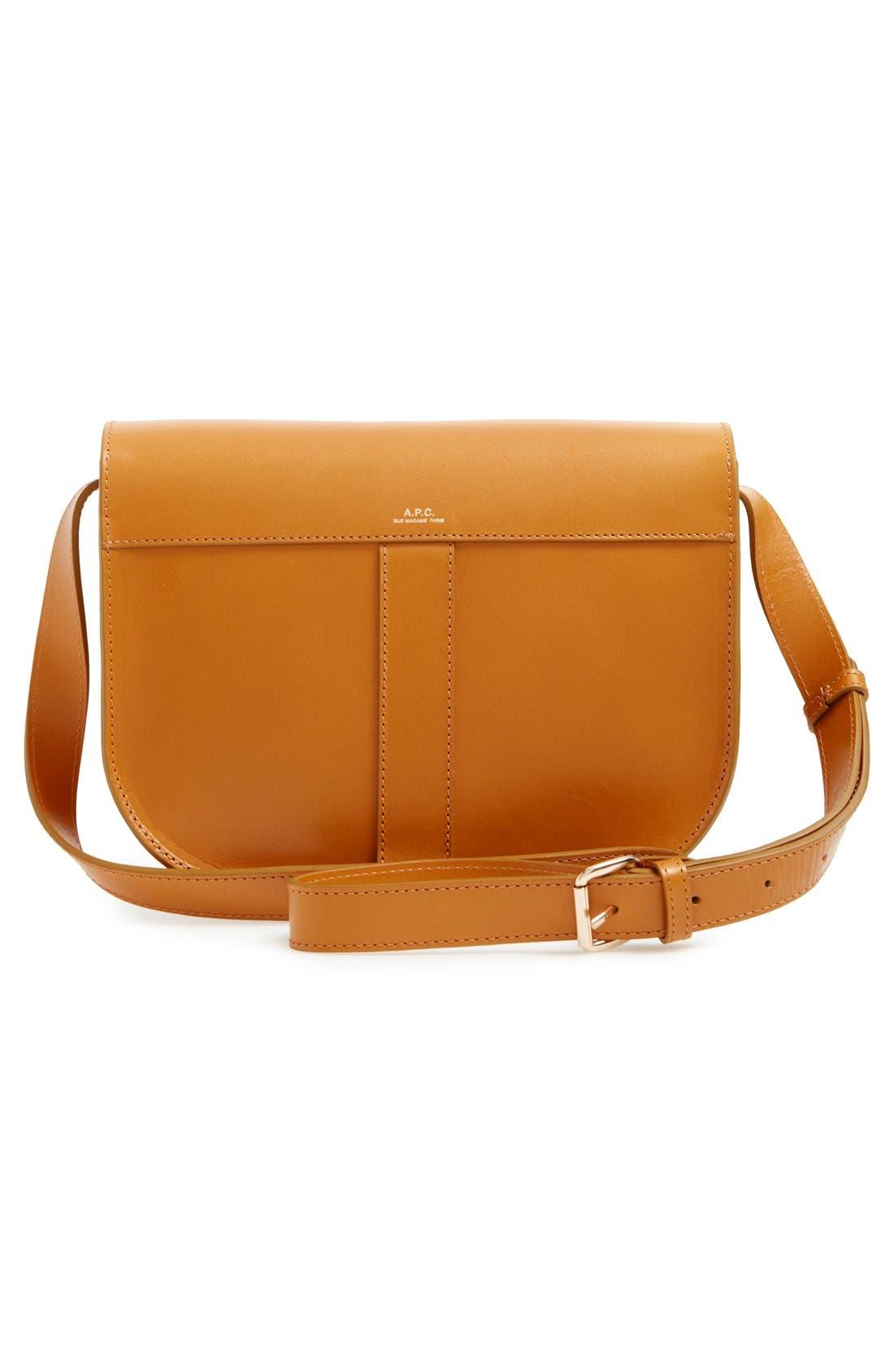 'Sac June' Leather Shoulder Bag,                             Alternate thumbnail 2, color,                             700