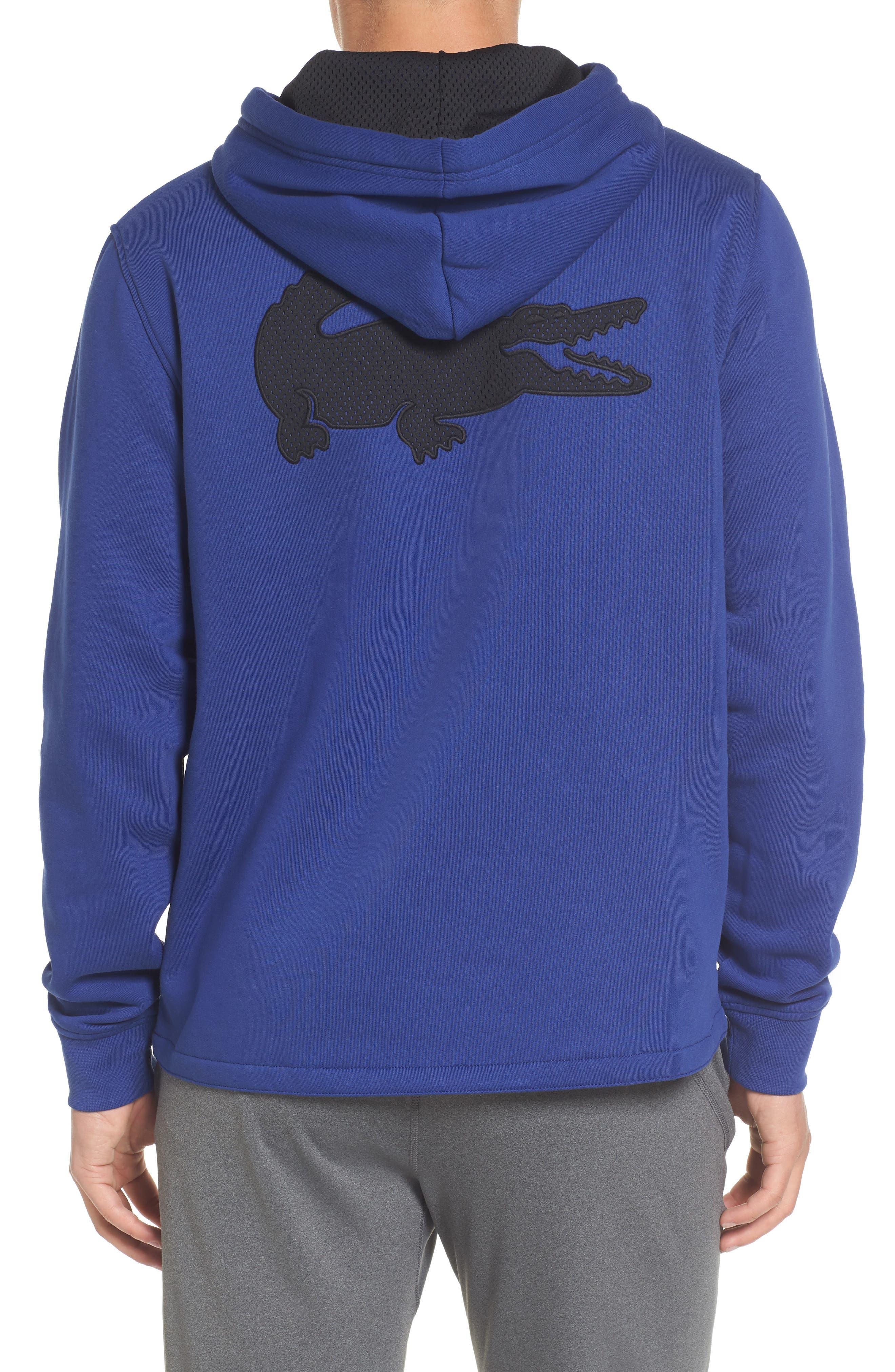 Brushed Fleece Logo Hoodie,                             Alternate thumbnail 4, color,