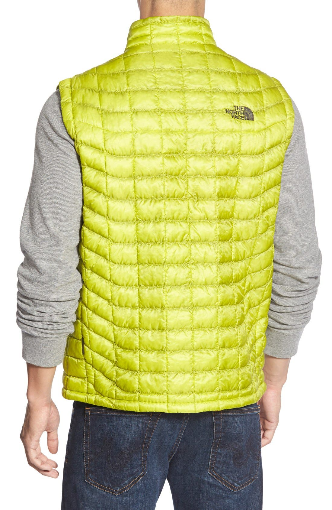 'ThermoBall<sup>™</sup>' Packable PrimaLoft<sup>®</sup> Vest,                             Alternate thumbnail 40, color,