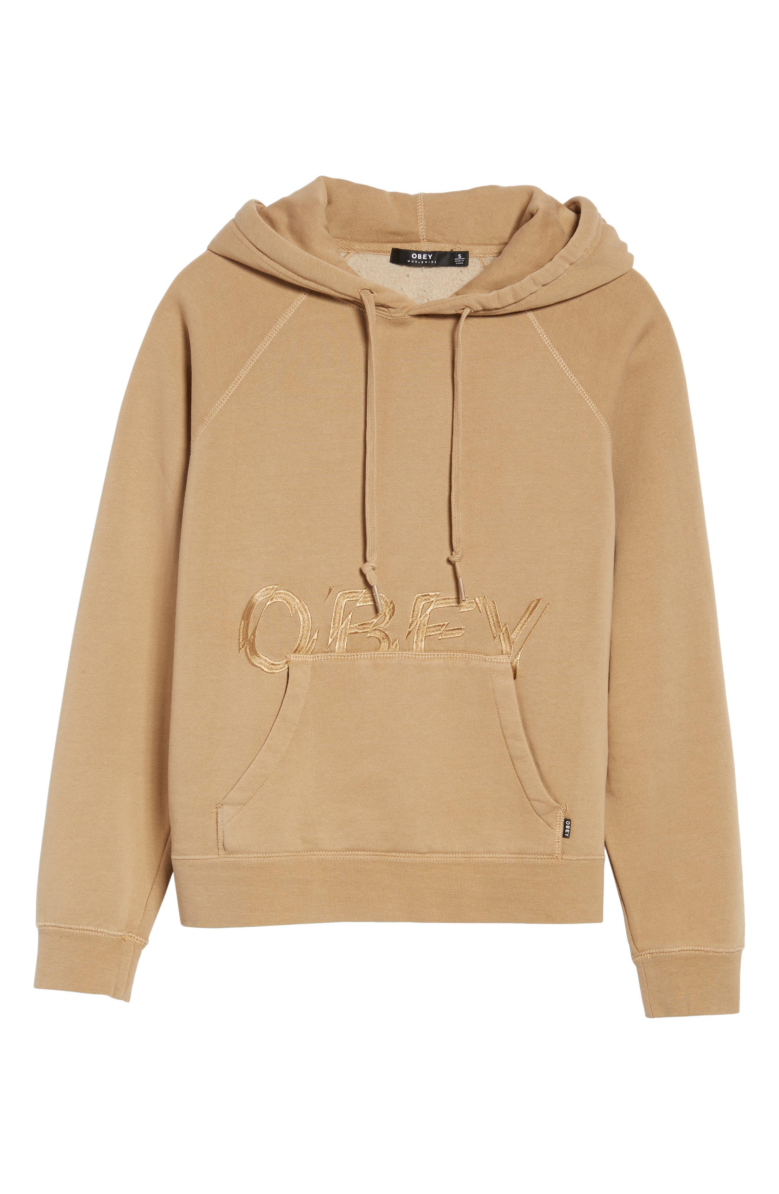 Parkside Hooded Pullover,                             Alternate thumbnail 6, color,                             250