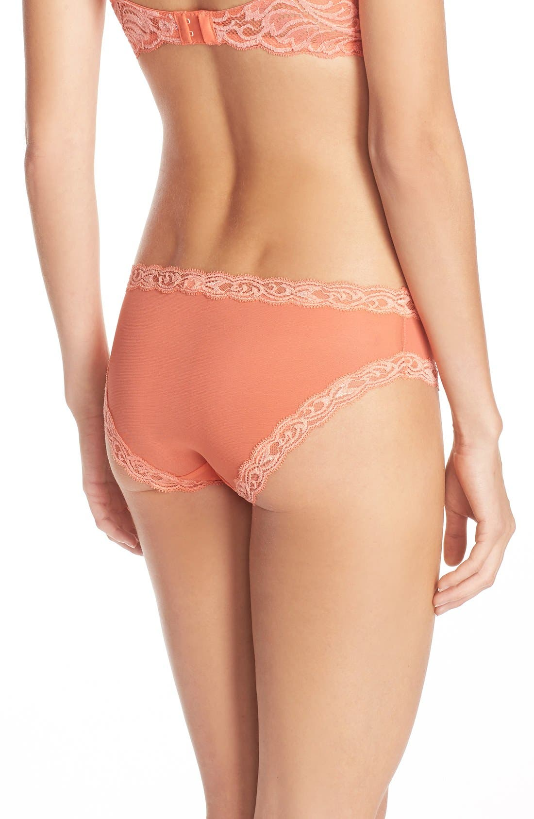 Feathers Hipster Briefs,                             Alternate thumbnail 169, color,
