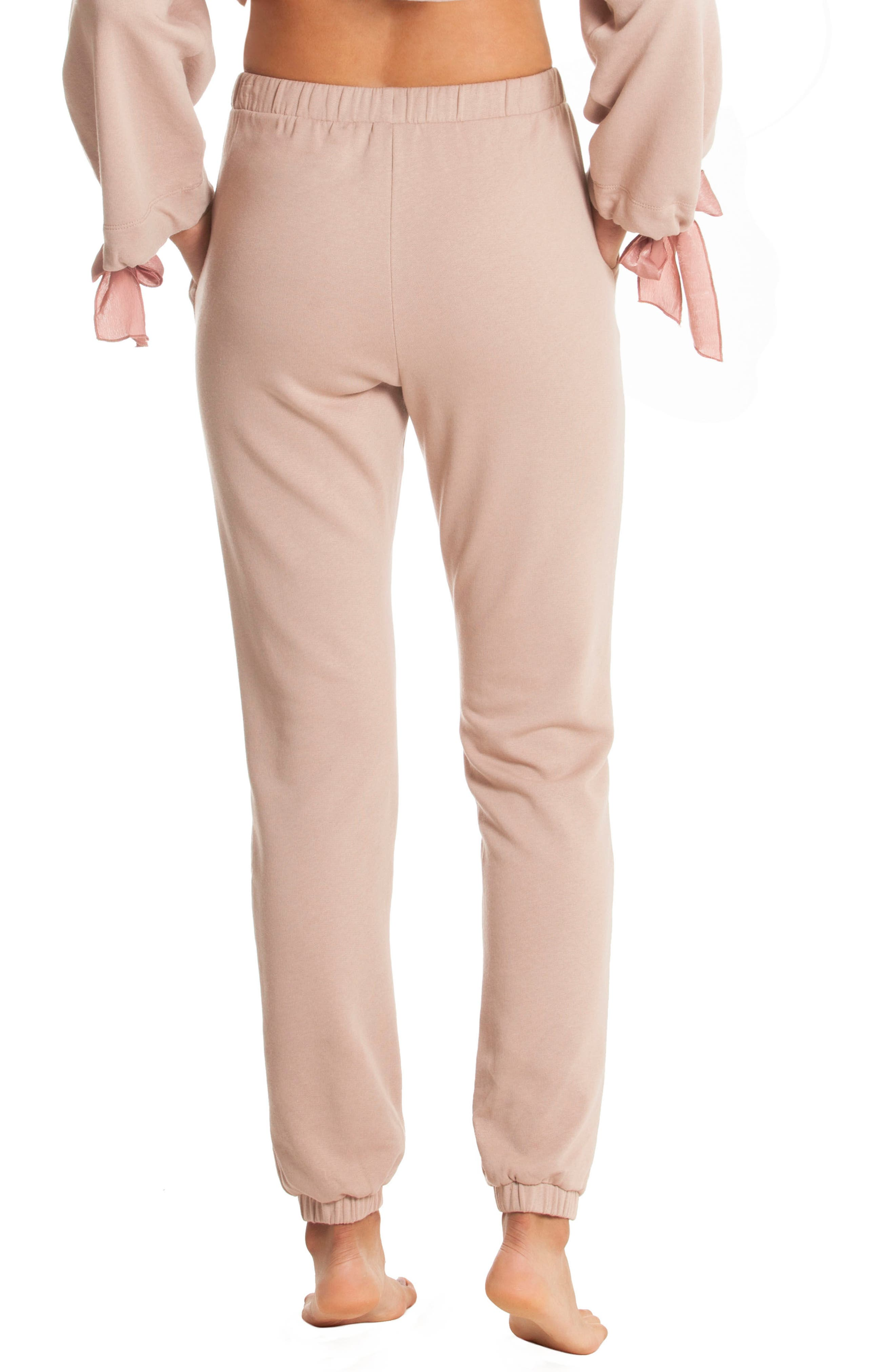 Fleece Lounge Pants,                             Alternate thumbnail 2, color,                             250