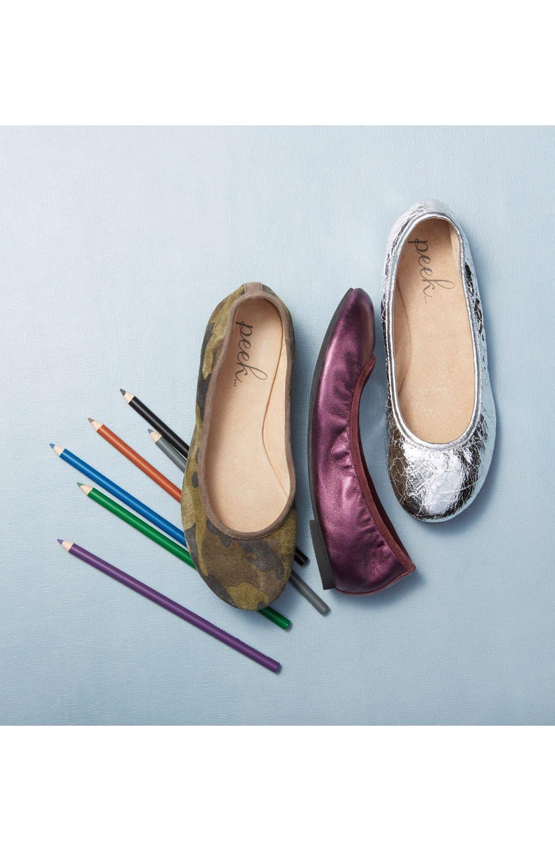 'Dita' Ballet Flat,                             Alternate thumbnail 5, color,                             040