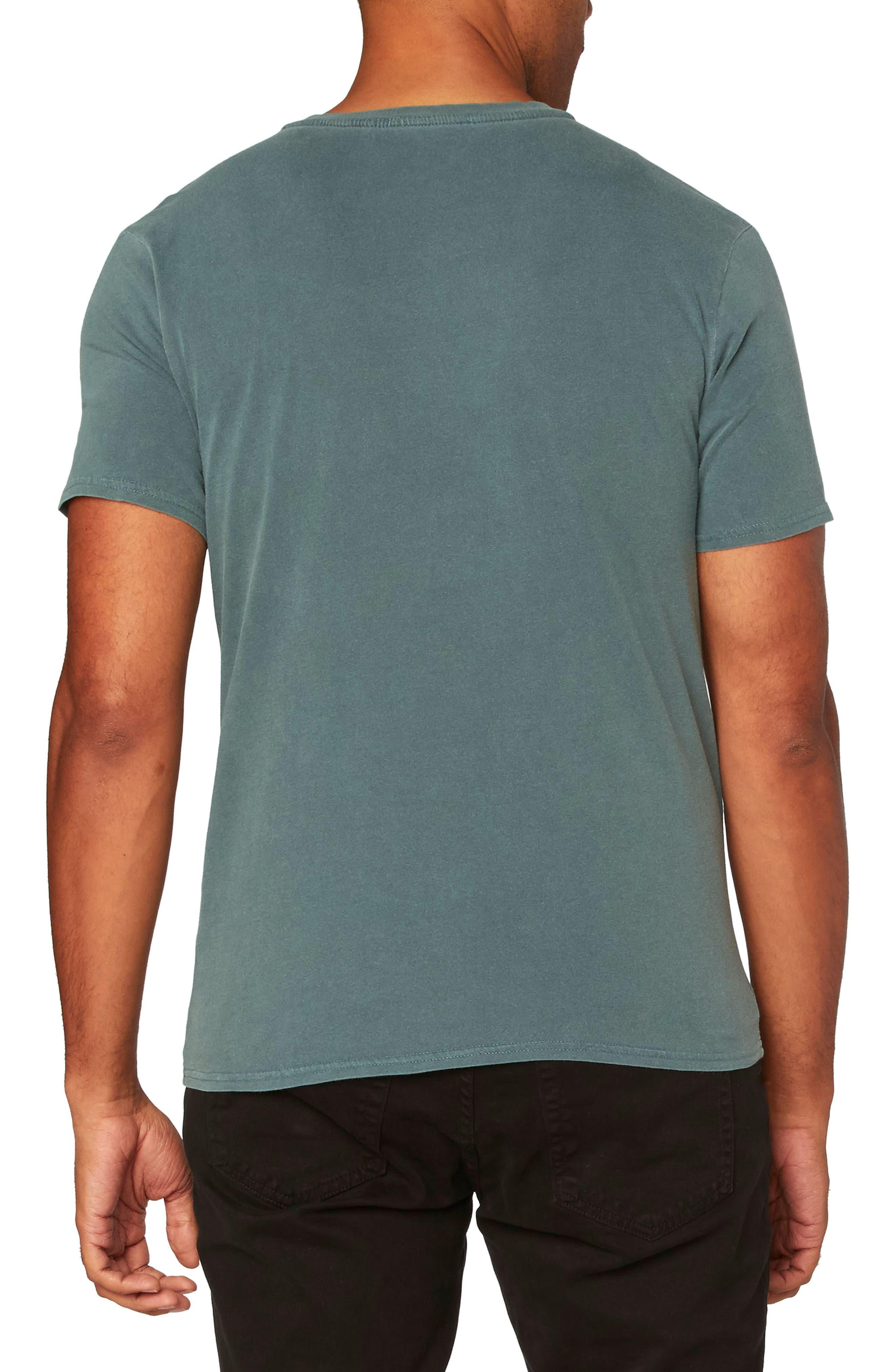 Standard V-Neck T-Shirt,                             Alternate thumbnail 10, color,