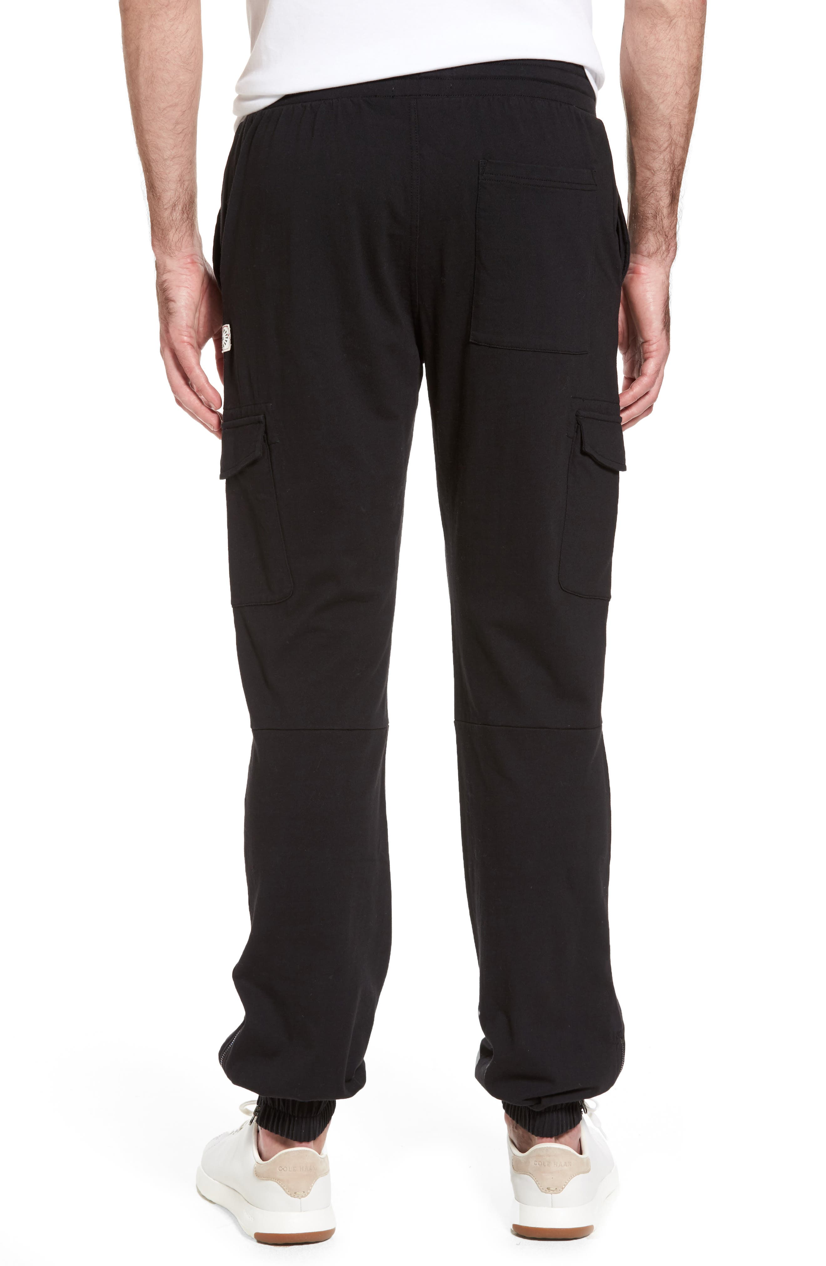 Jersey Cargo Pants,                             Alternate thumbnail 2, color,