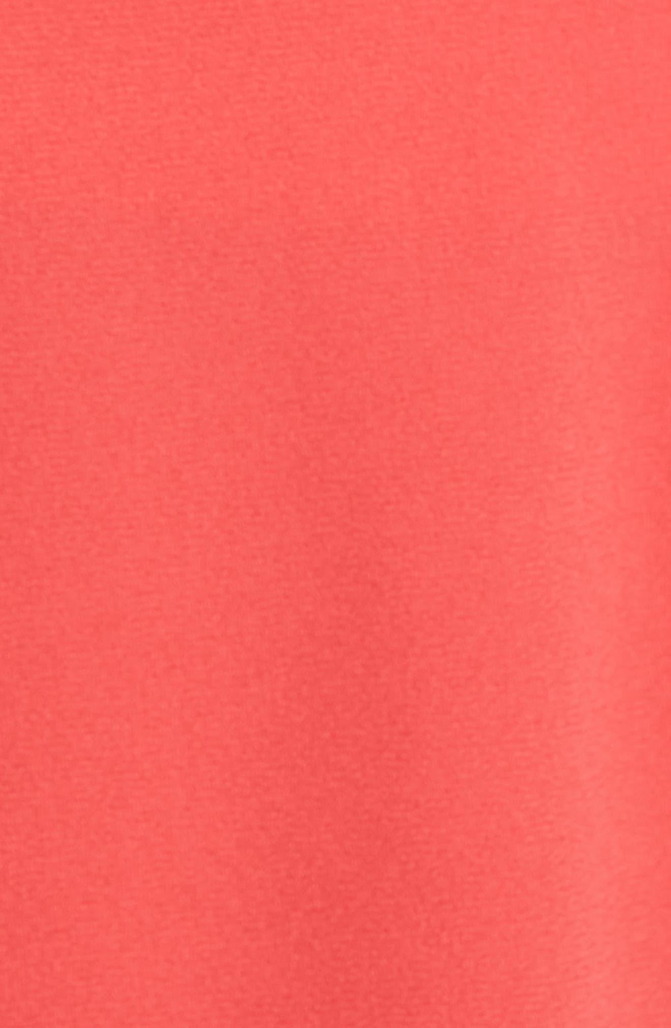 Pleat Front High Waist Shorts,                             Alternate thumbnail 15, color,
