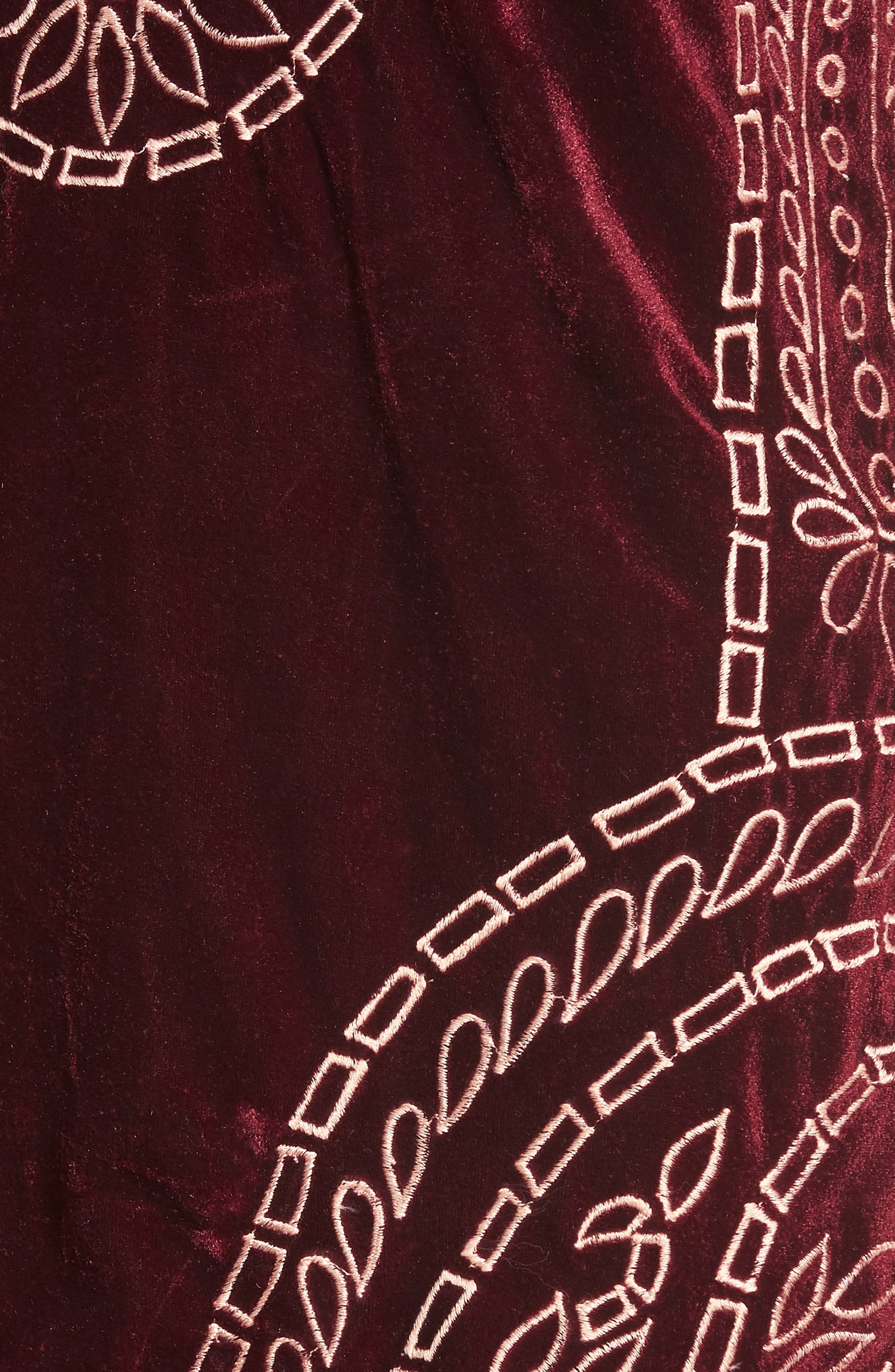 Lily Embroidered Velvet Shift Dress,                             Alternate thumbnail 5, color,