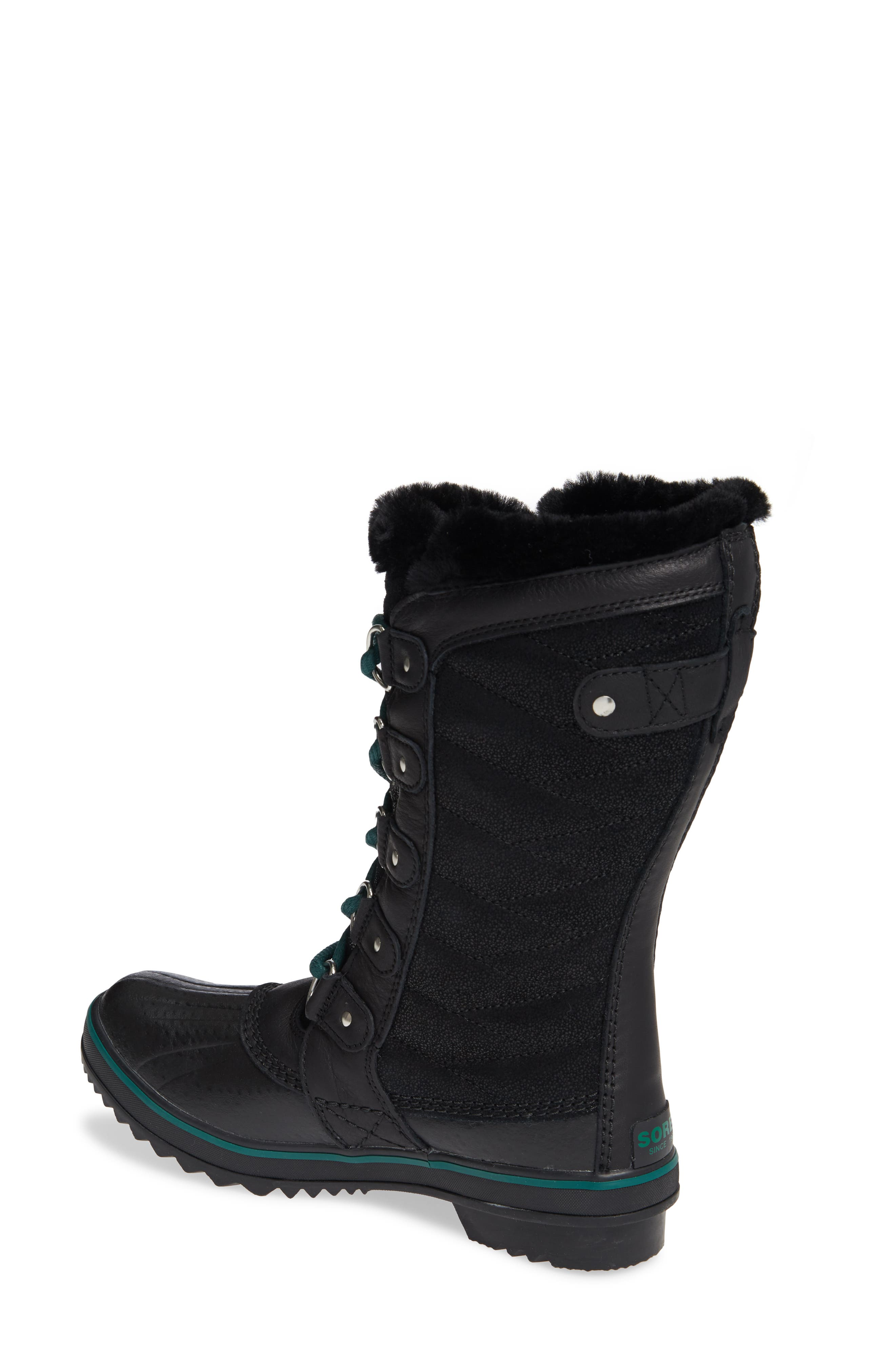 Tofino Faux Fur & Genuine Shearling Lined Waterproof Boot,                             Alternate thumbnail 2, color,                             BLACK