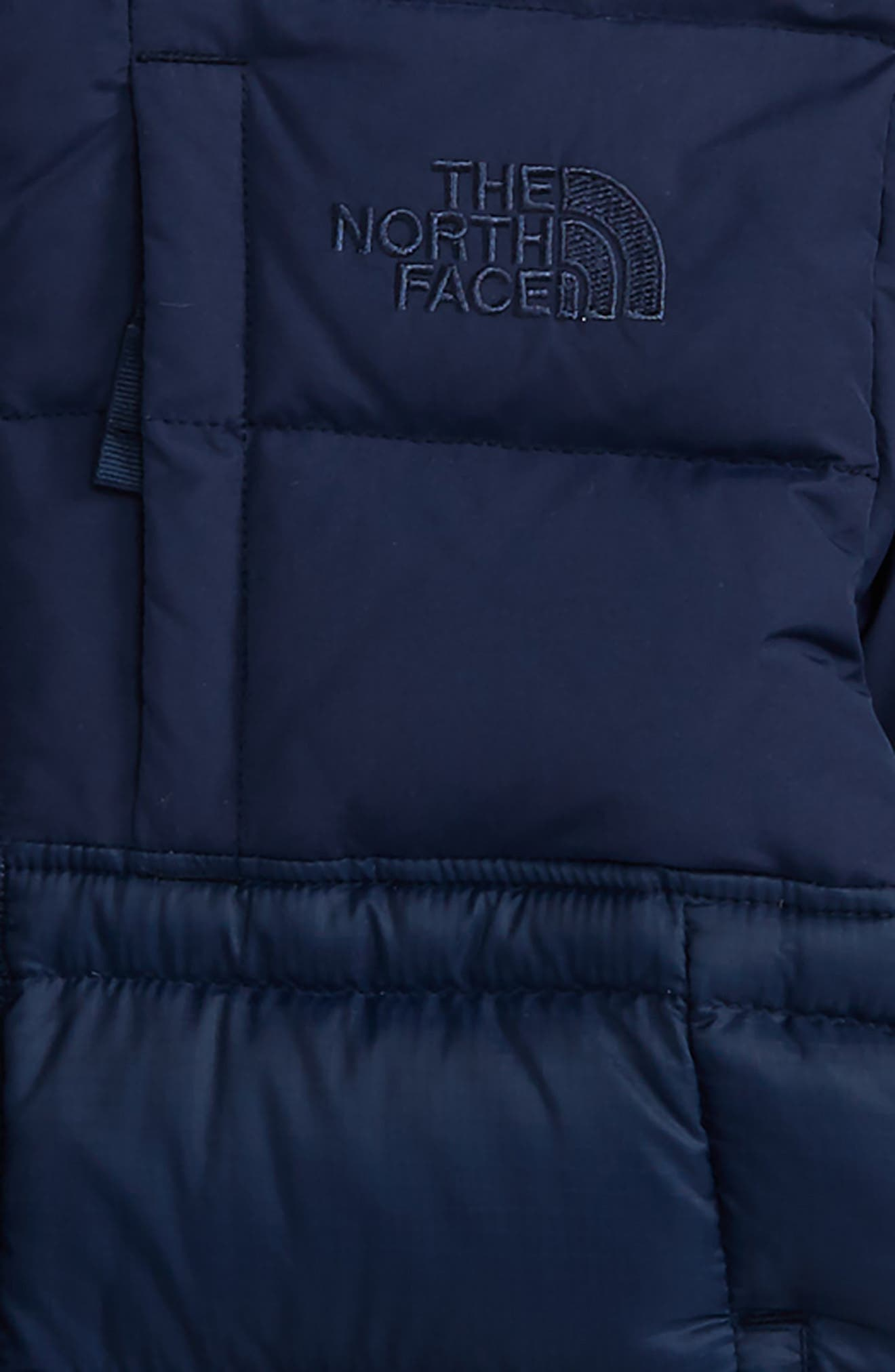 Franklin Water Resistant 550-Fill Down Jacket,                             Alternate thumbnail 5, color,