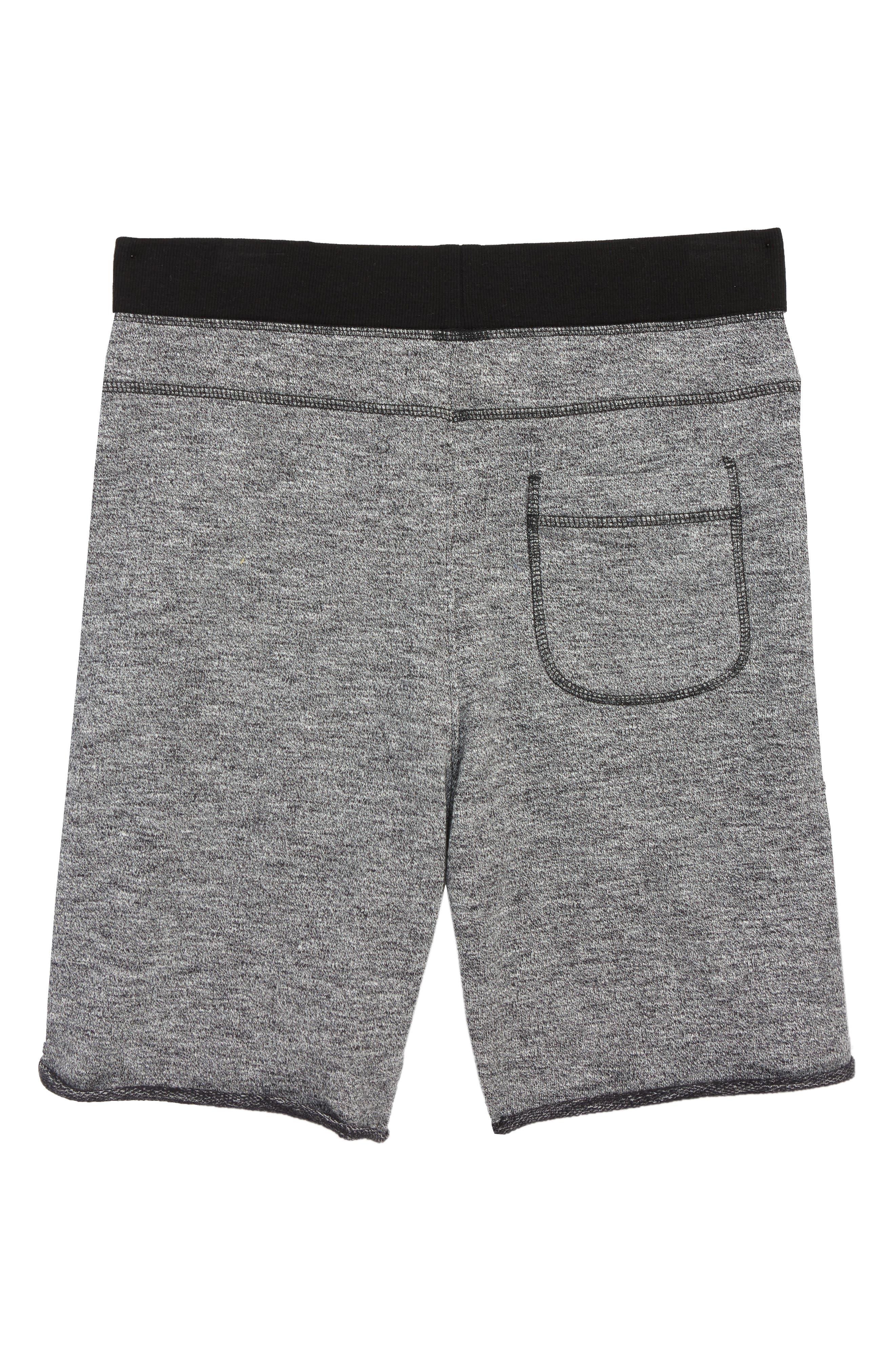 Fleece Knit Shorts,                             Alternate thumbnail 2, color,                             030