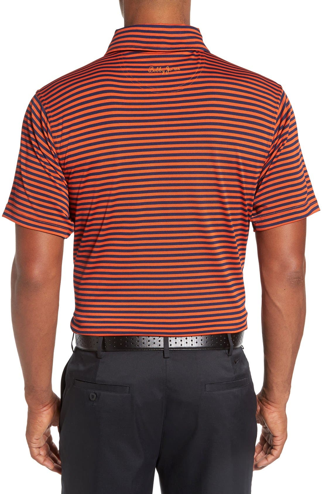 XH2O Feed Stripe Stretch Golf Polo,                             Alternate thumbnail 38, color,