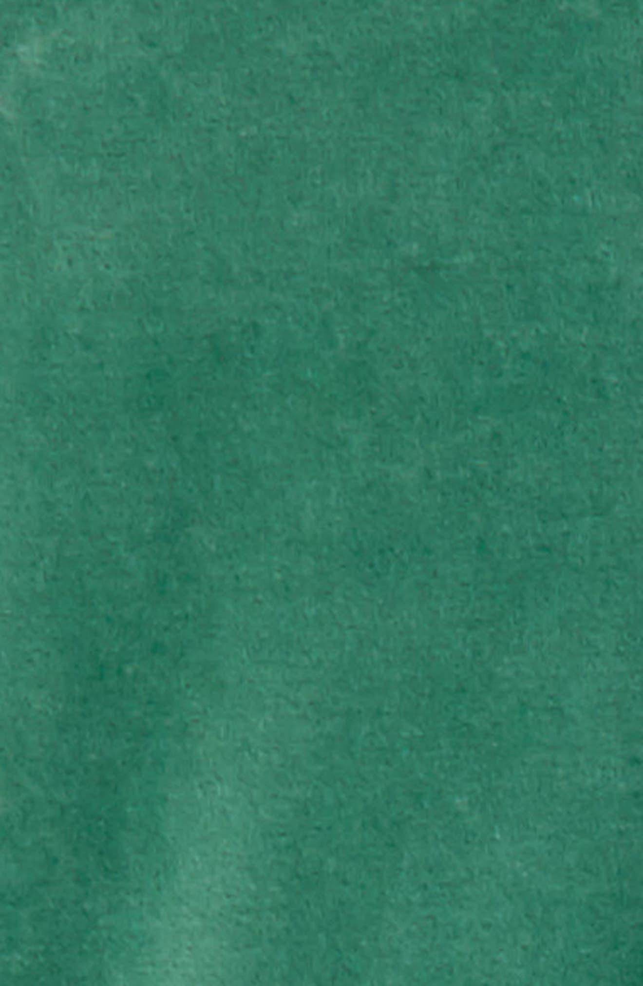 Velvet Leggings,                             Alternate thumbnail 2, color,                             315