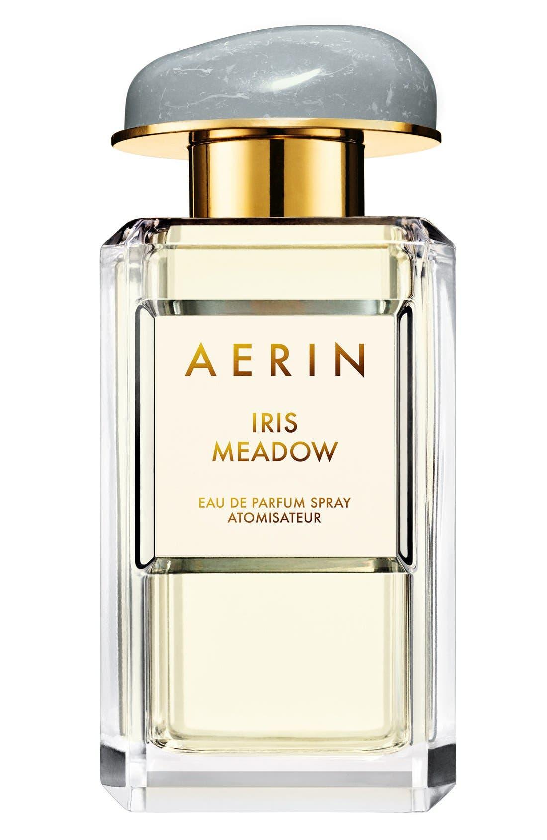 AERIN Beauty Iris Meadow Eau de Parfum,                             Main thumbnail 1, color,                             NO COLOR