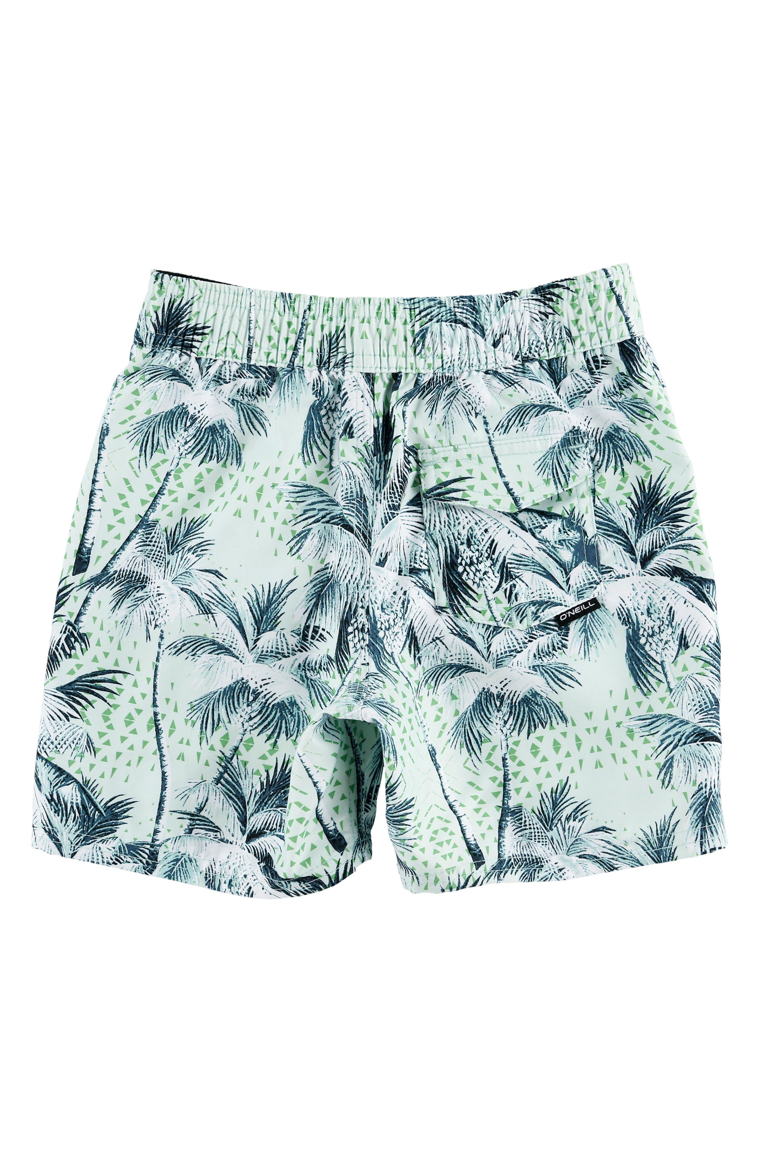 O'NEILL,                             Darn Old Palmer Board Shorts,                             Alternate thumbnail 2, color,                             400