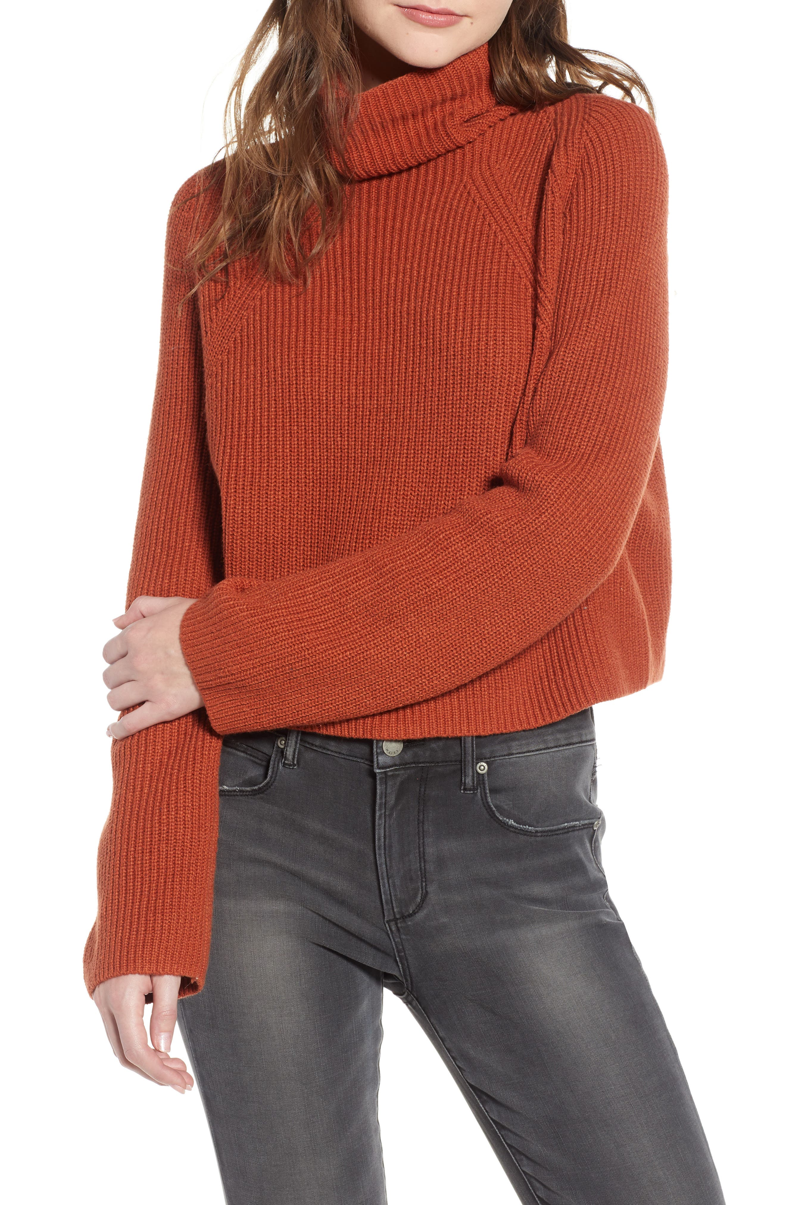 LEITH, Transfer Stitch Turtleneck Sweater, Main thumbnail 1, color, 210
