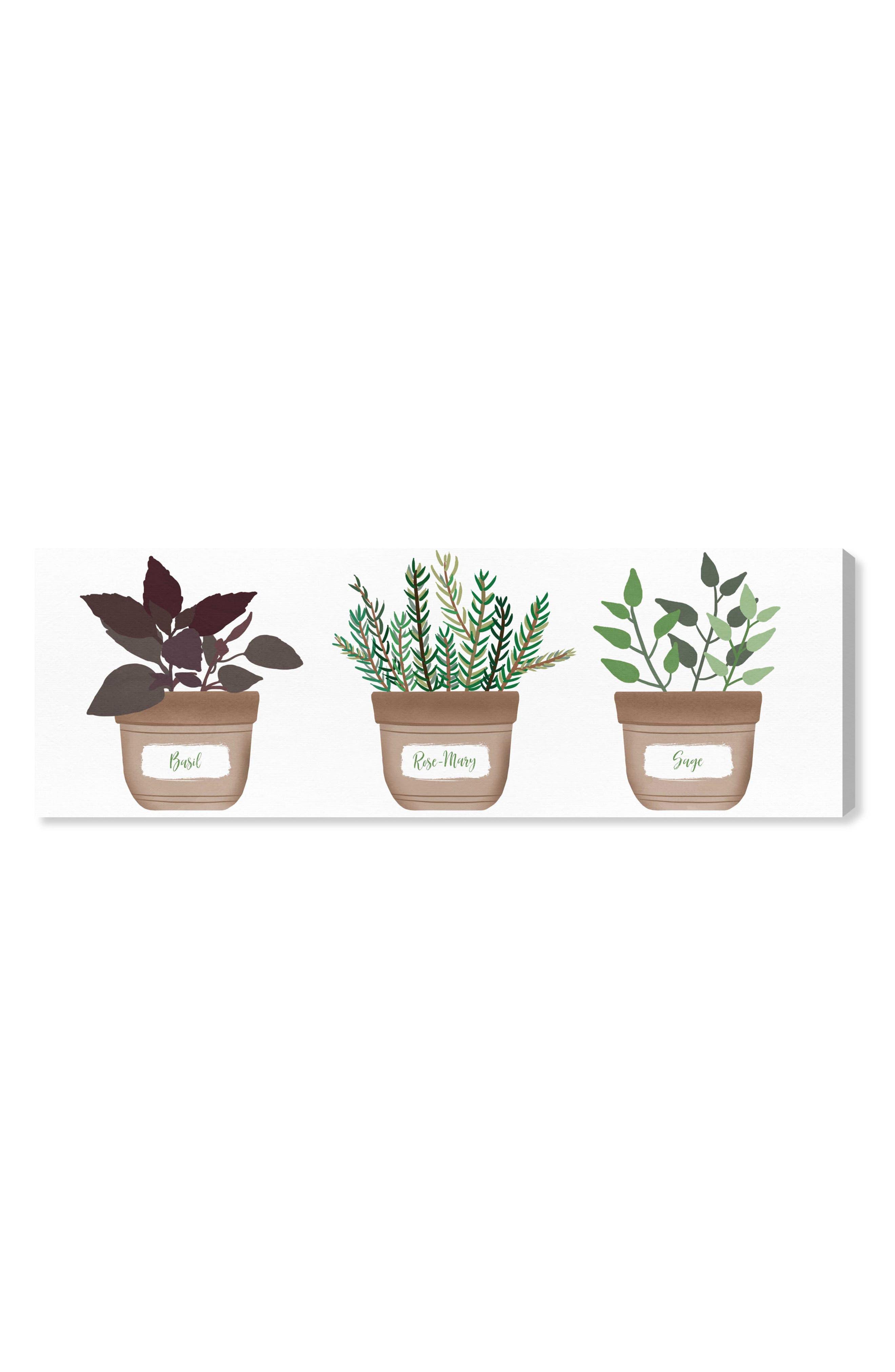 Herbs Canvas Wall Art,                             Main thumbnail 1, color,                             GREEN