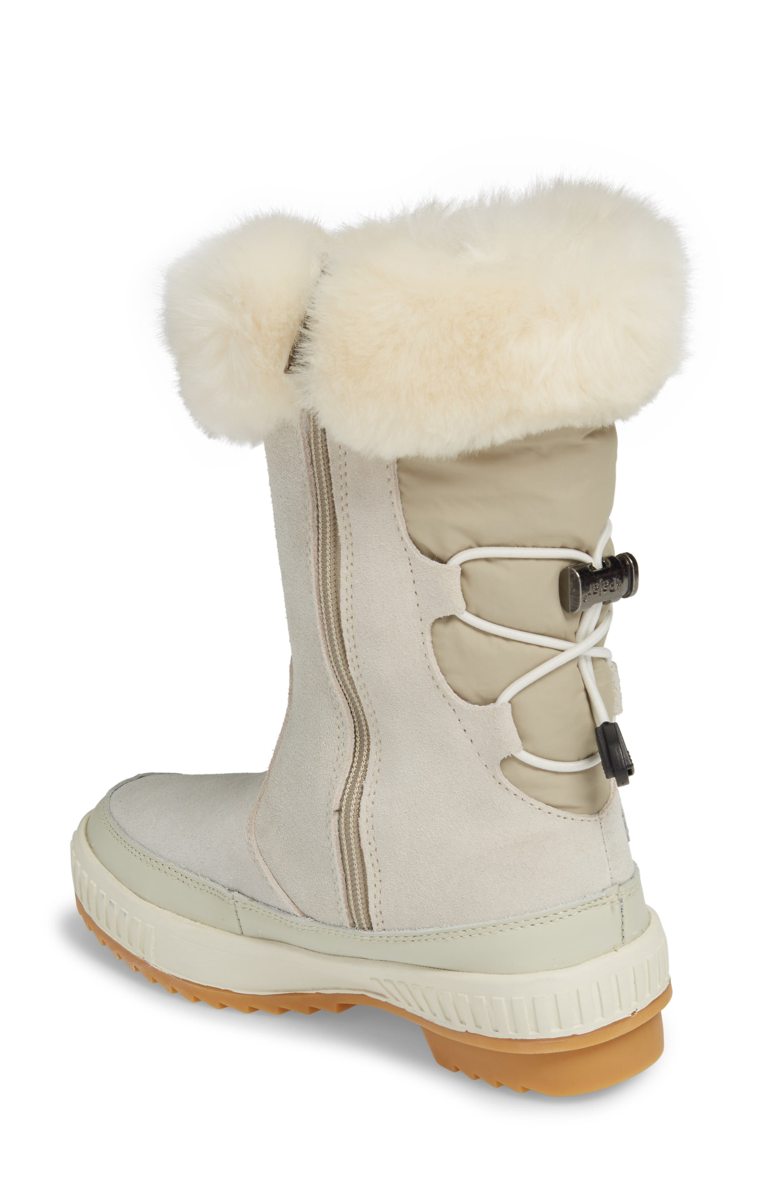 Kady Waterproof Insulated Winter Boot with Plush Cuff,                             Alternate thumbnail 2, color,                             100