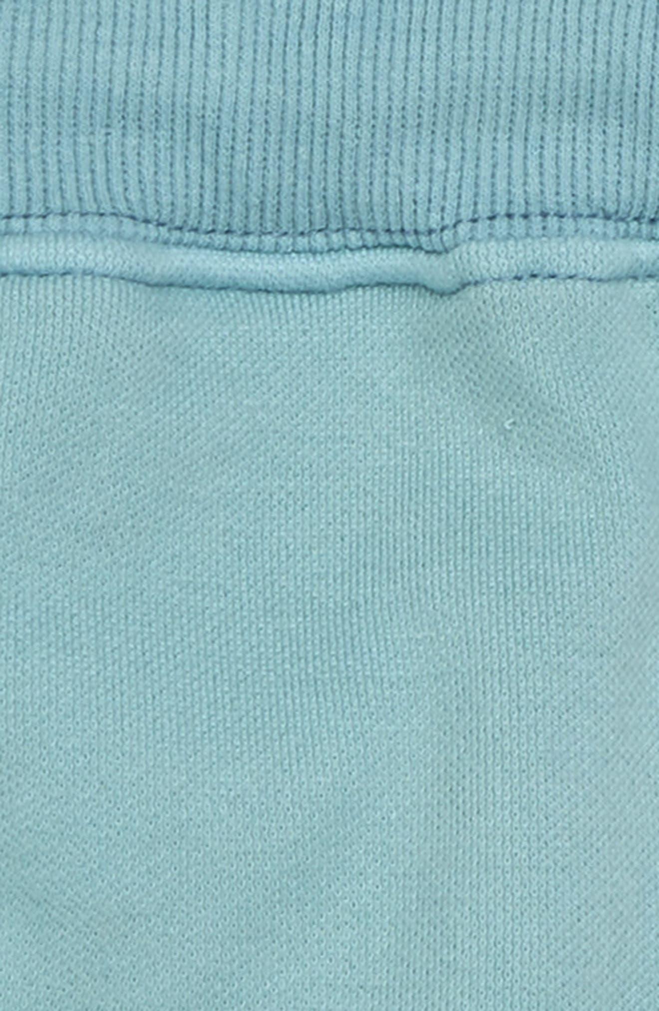 Record Shorts,                             Alternate thumbnail 2, color,                             330