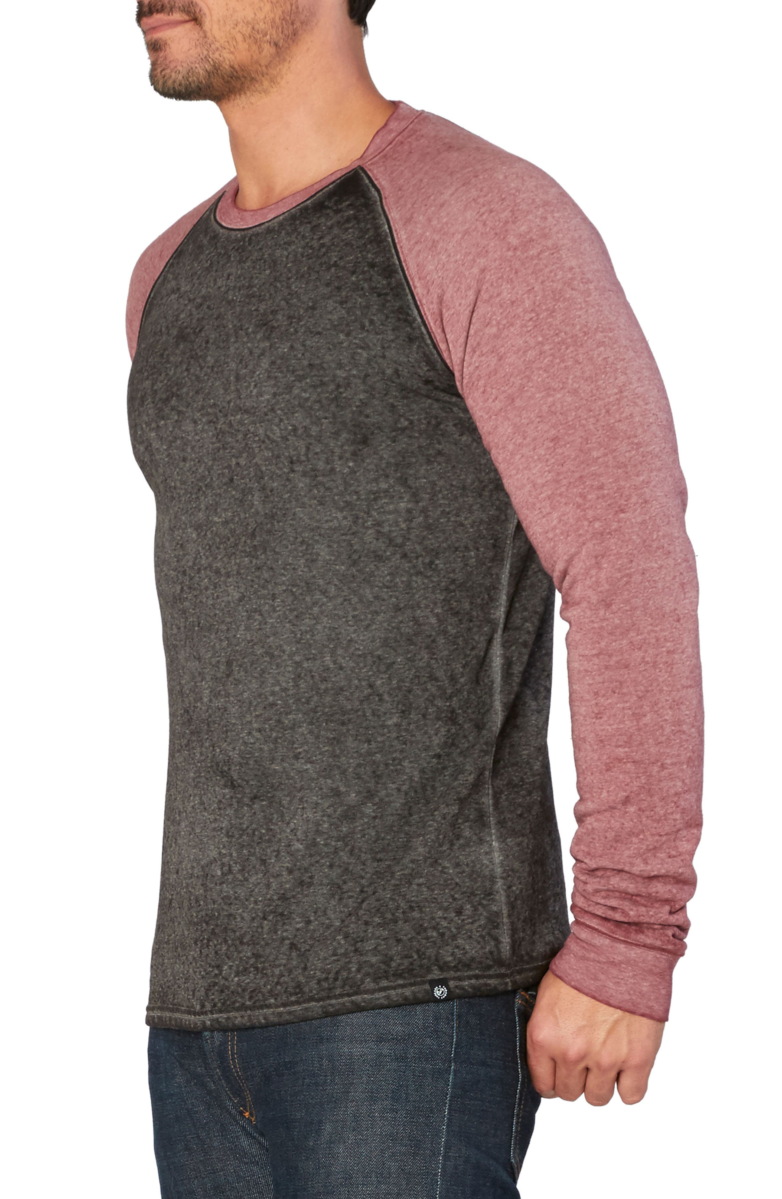 Washed Raglan Sleeve Sweatshirt,                             Alternate thumbnail 17, color,