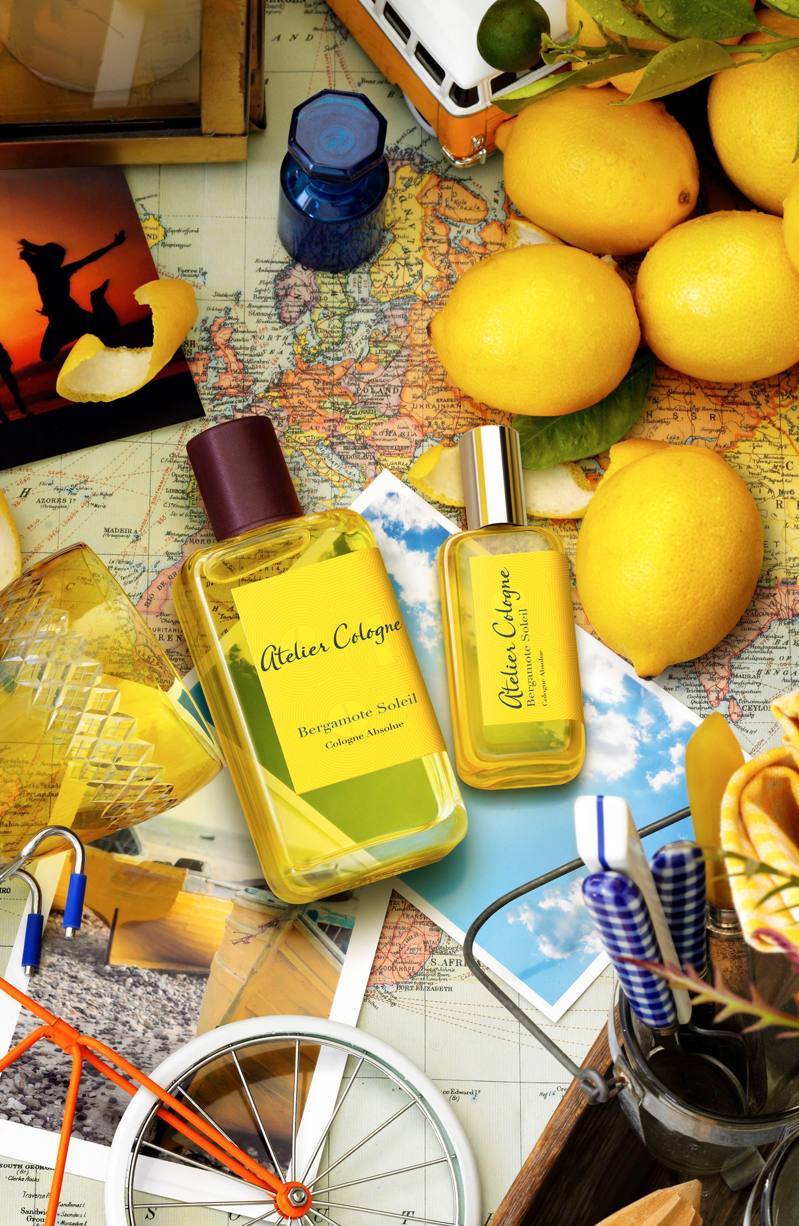 Bergamote Soleil Body & Hair Shower Gel,                             Alternate thumbnail 4, color,                             NO COLOR