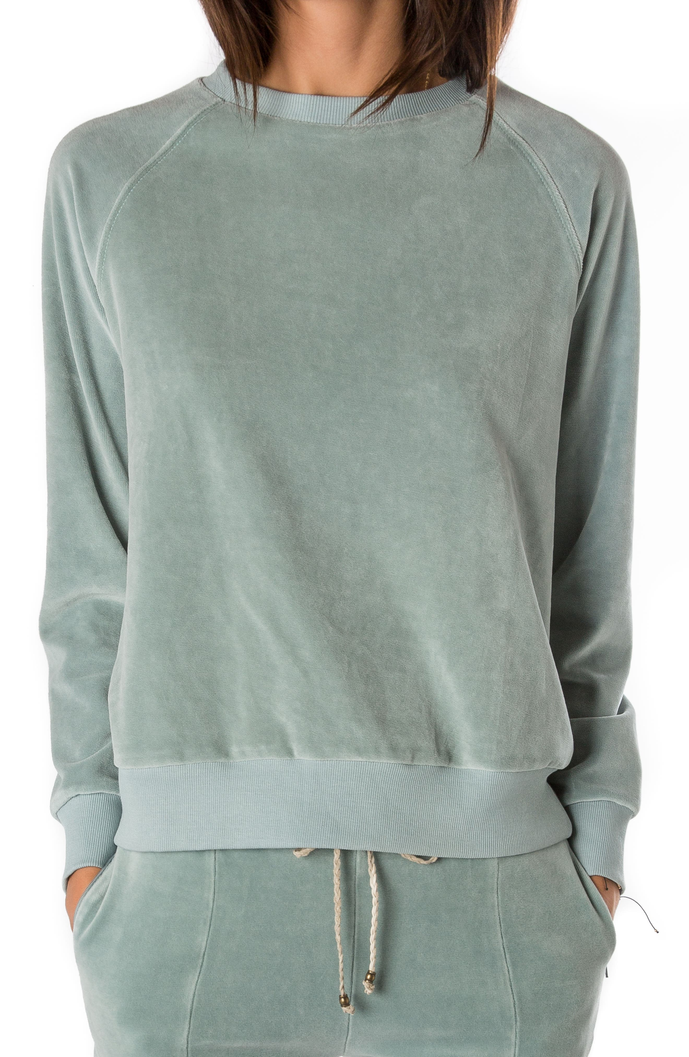 Velour Sweatshirt,                             Main thumbnail 1, color,                             400