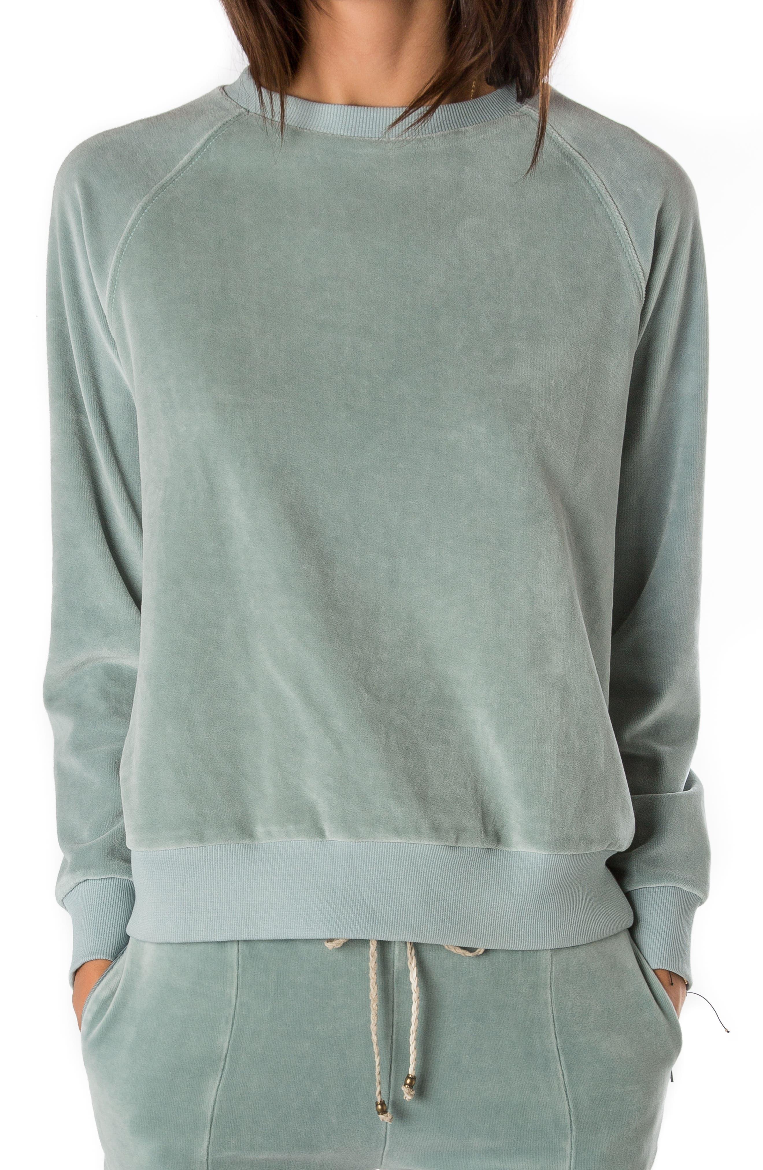 Velour Sweatshirt,                         Main,                         color, 400