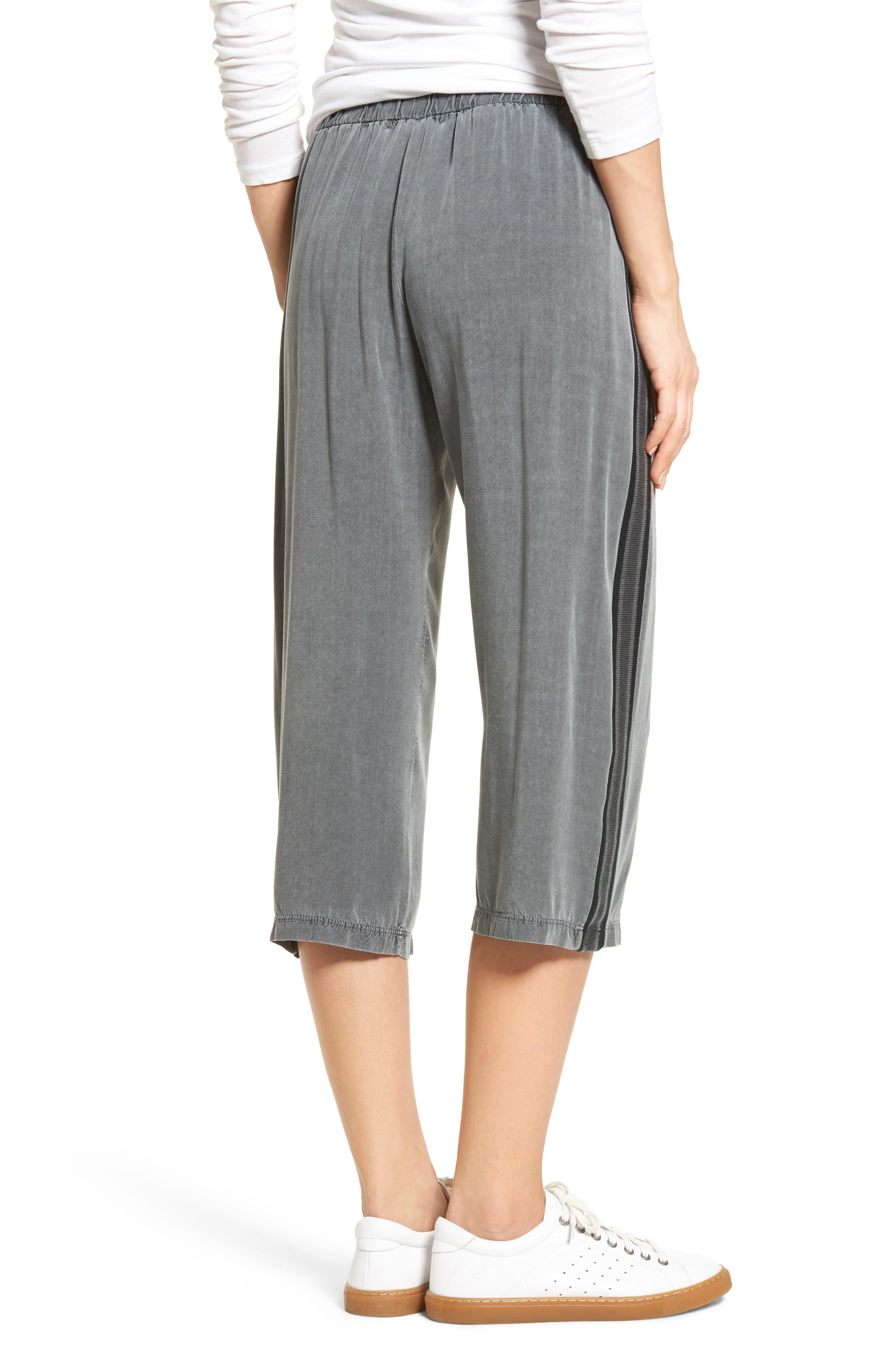 Stripe Crop Pants,                             Alternate thumbnail 2, color,                             020