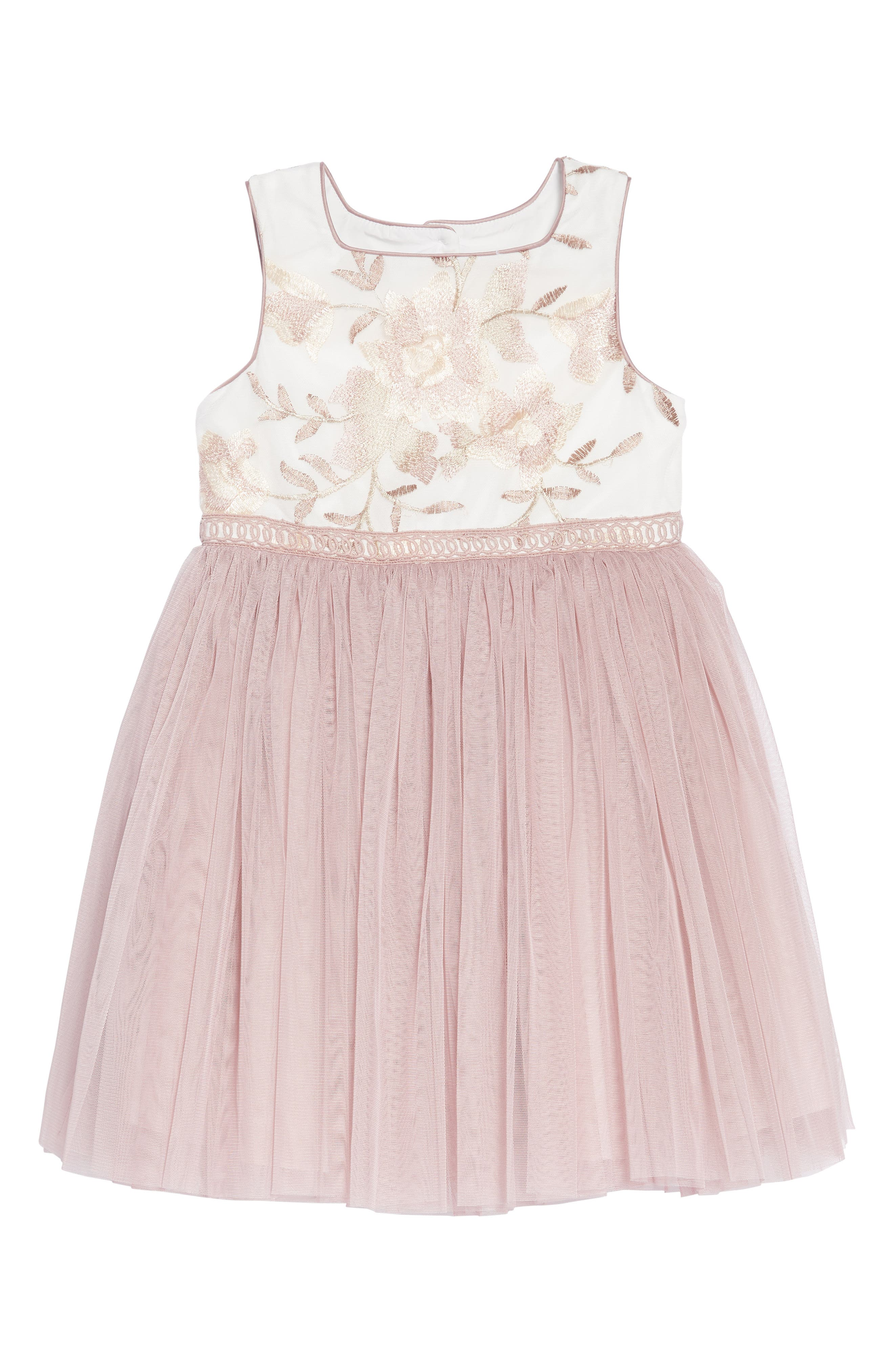 Embroidered Tulle Dress,                         Main,                         color, MULTI