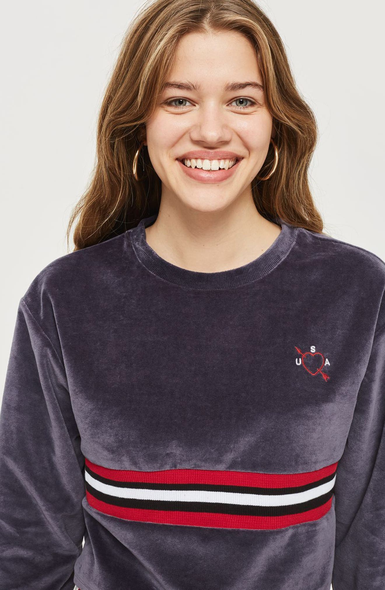Embroidered Velour Crop Sweater,                             Alternate thumbnail 4, color,                             410