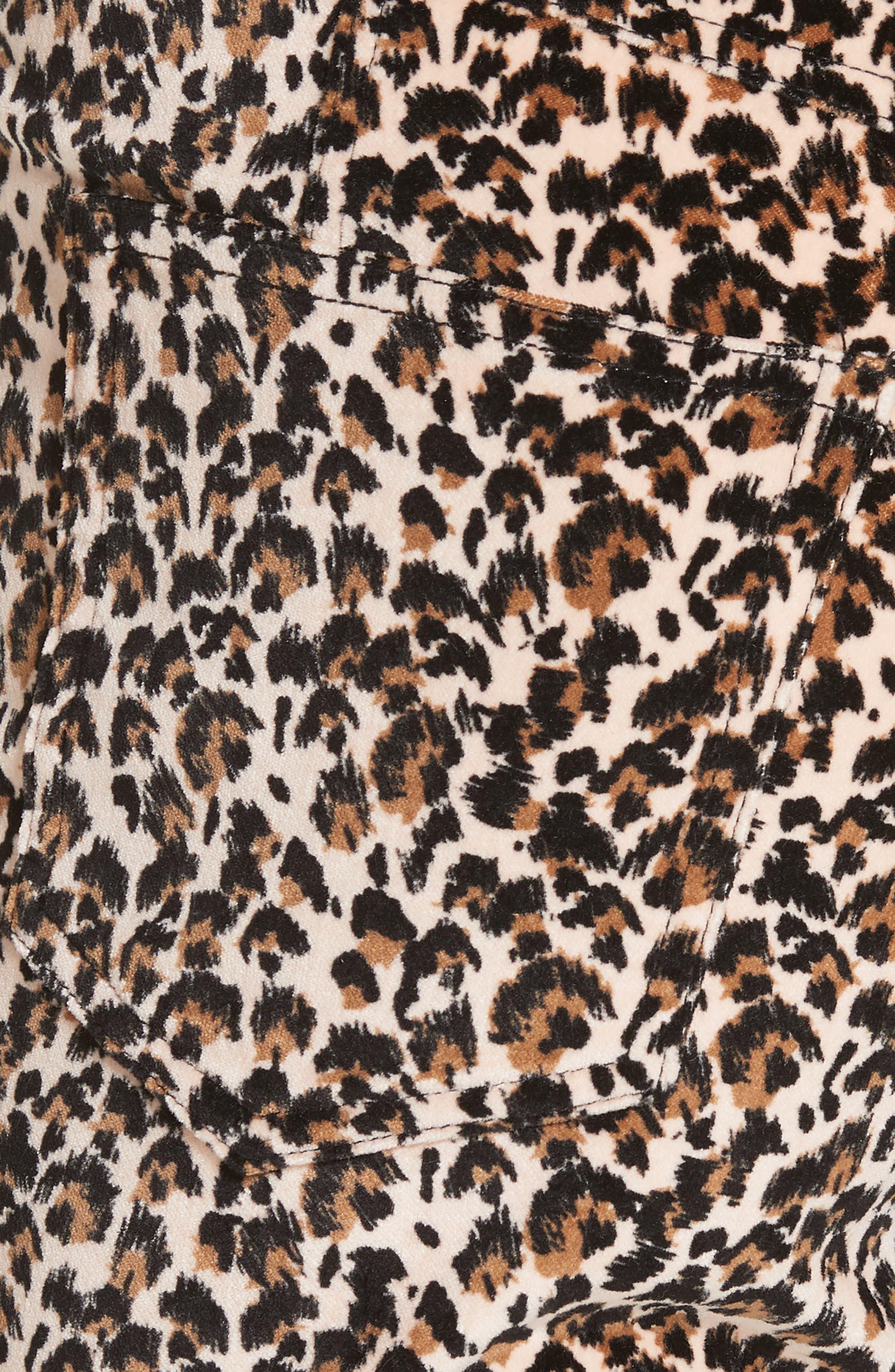 Leopard Print Stretch Velvet Pants,                             Alternate thumbnail 5, color,                             250