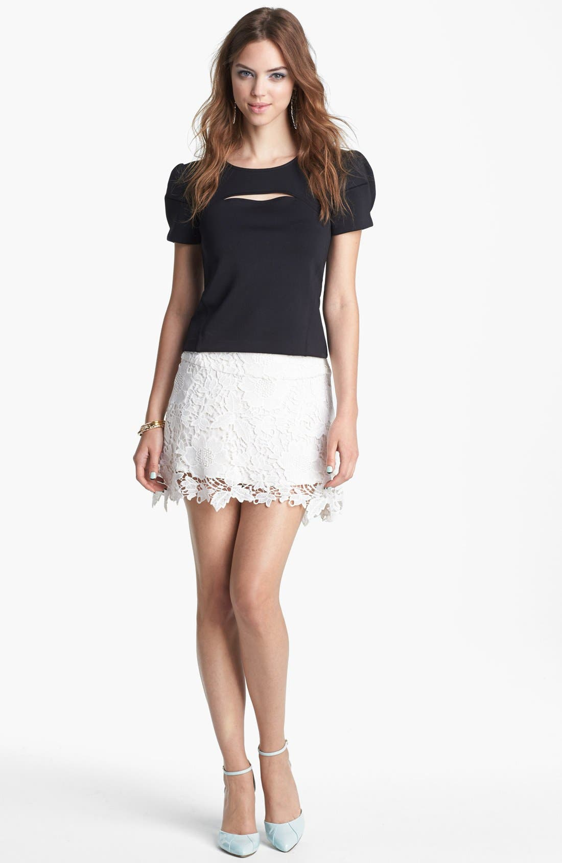 Embroidered Lace Skirt,                         Main,                         color, 100