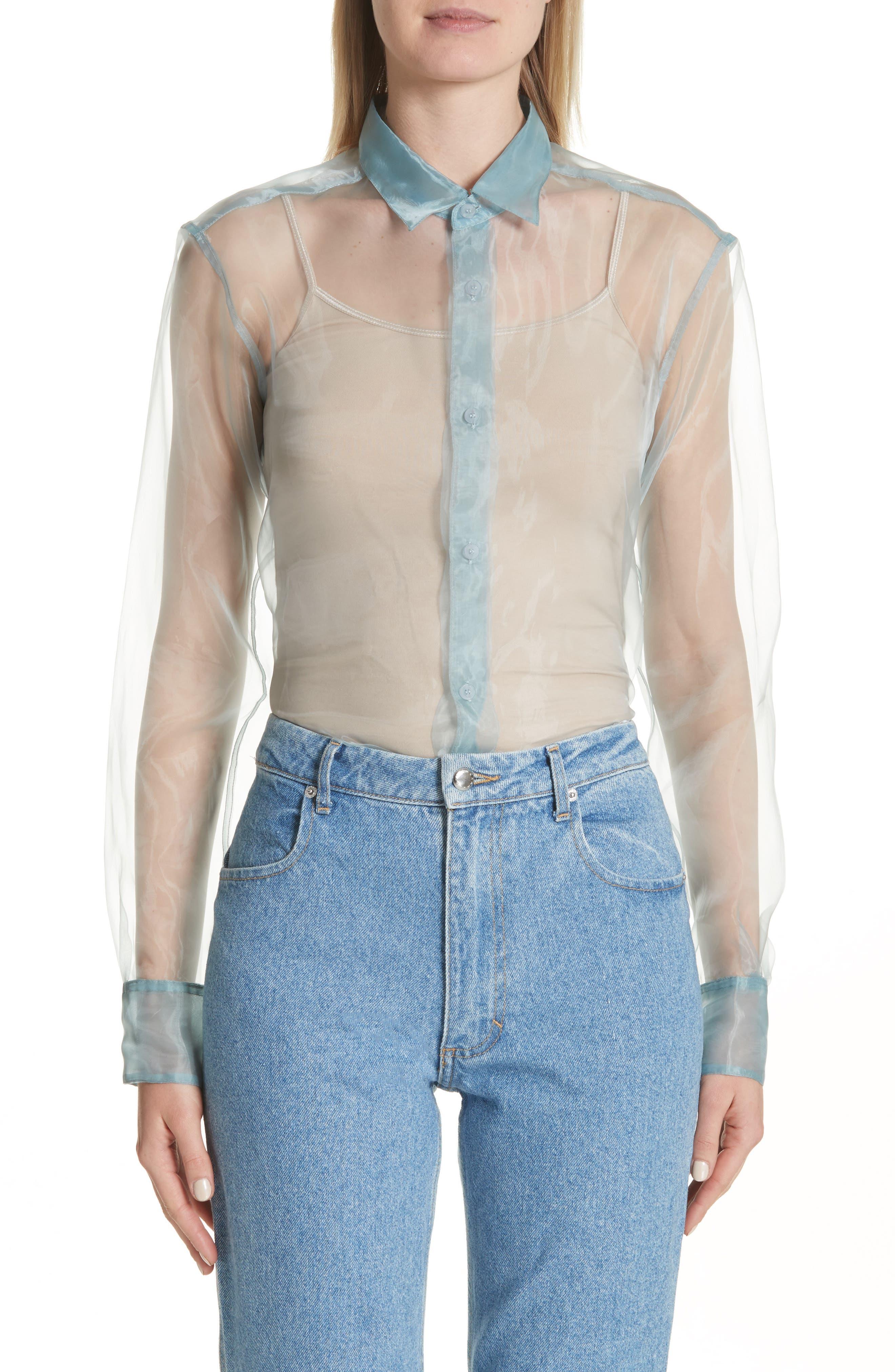 Iridescent Sheer Organza Shirt,                             Main thumbnail 1, color,                             400