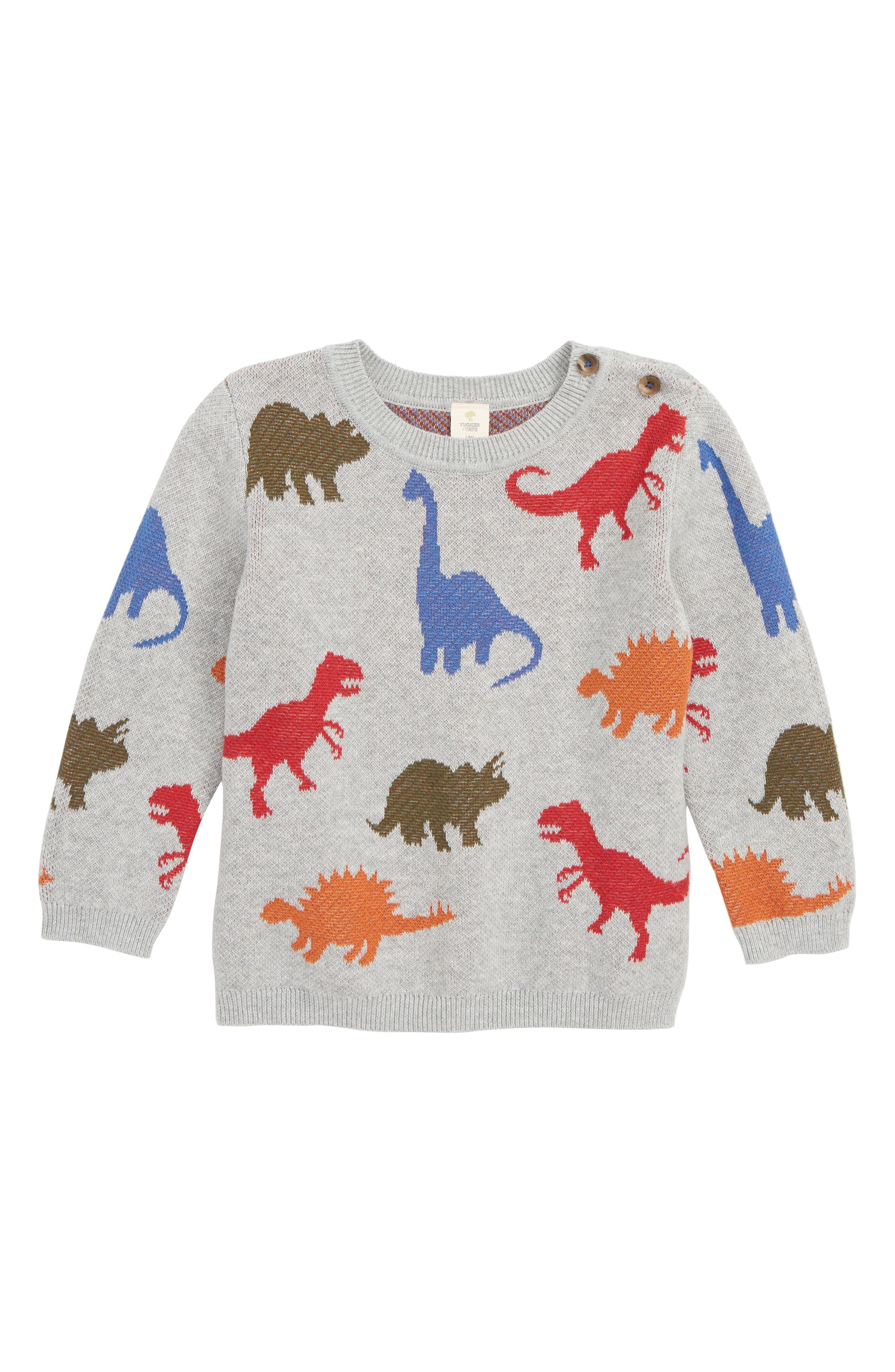 Dinosaur Sweater,                             Main thumbnail 1, color,                             050