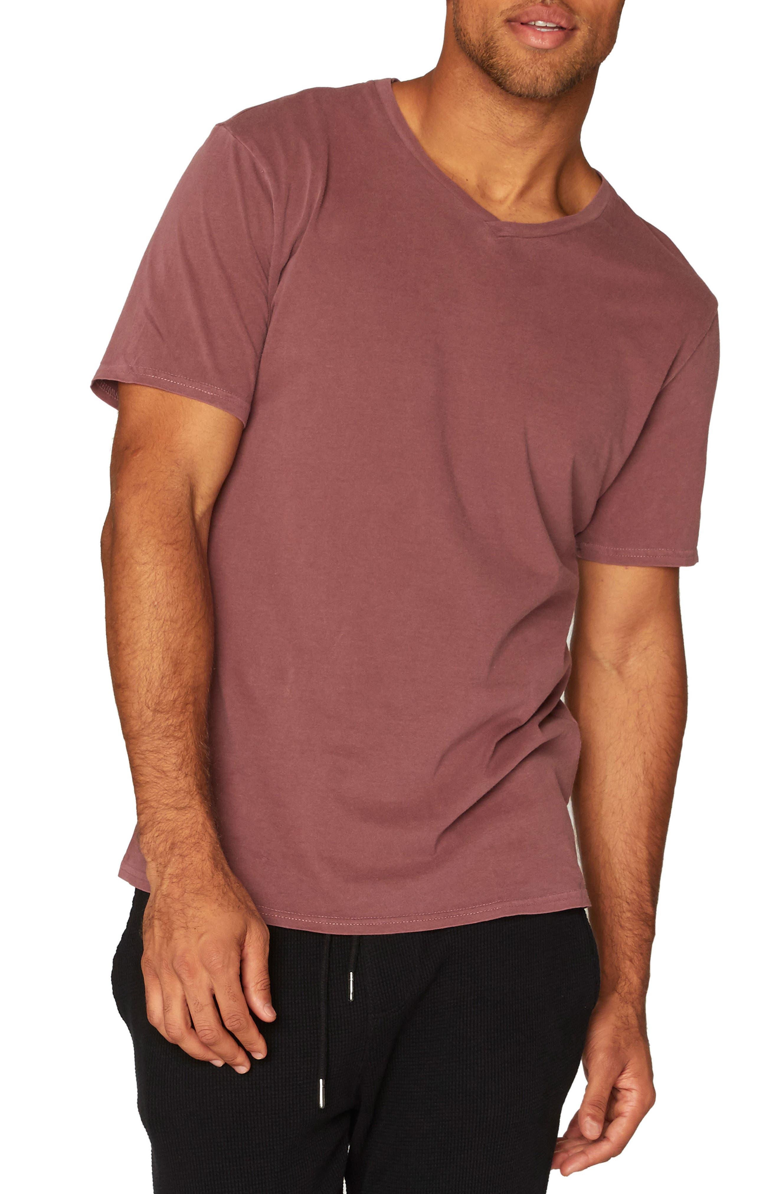 Standard V-Neck T-Shirt,                             Main thumbnail 6, color,